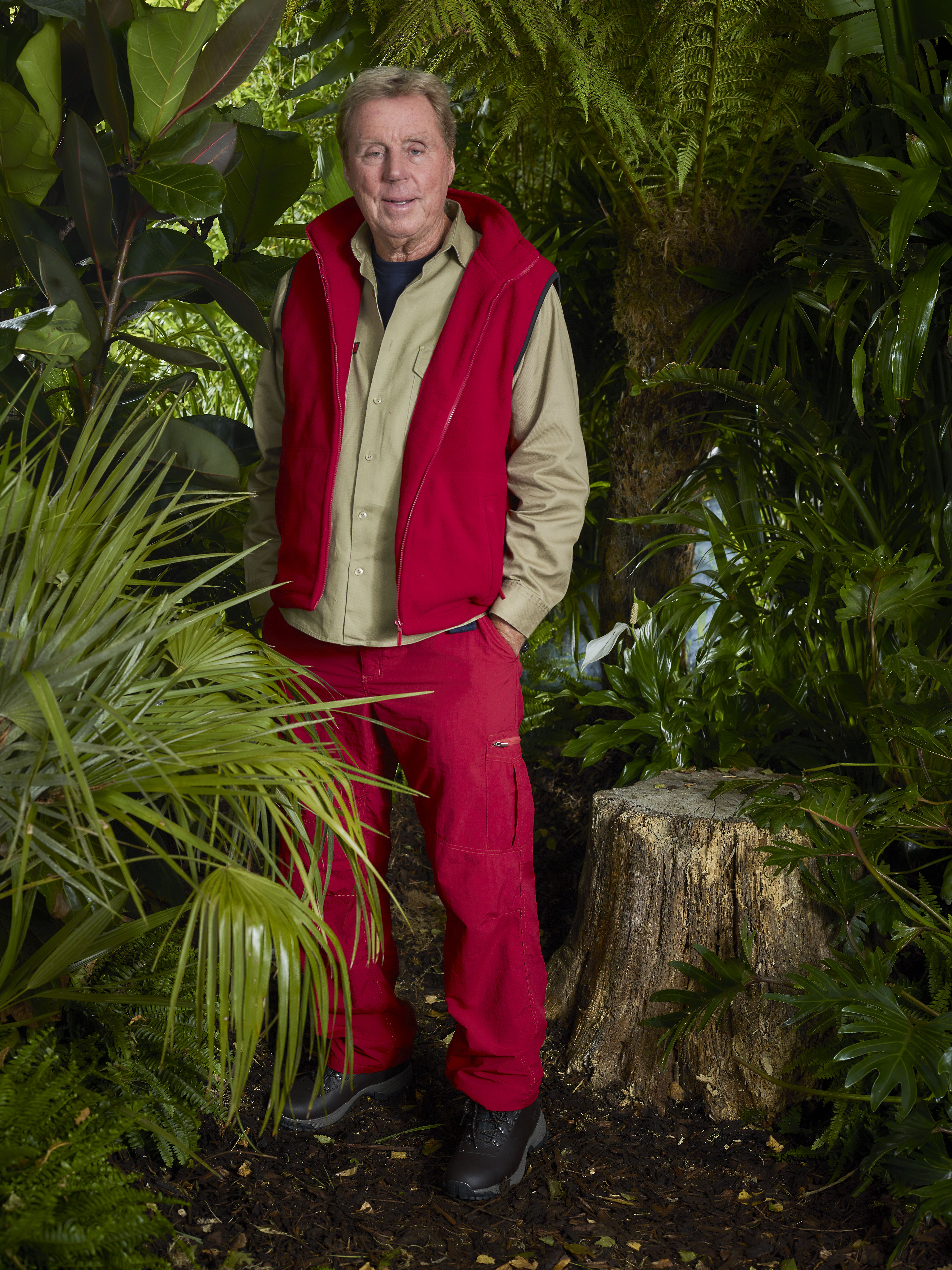 Harry Redknapp on I'm A Celebrity