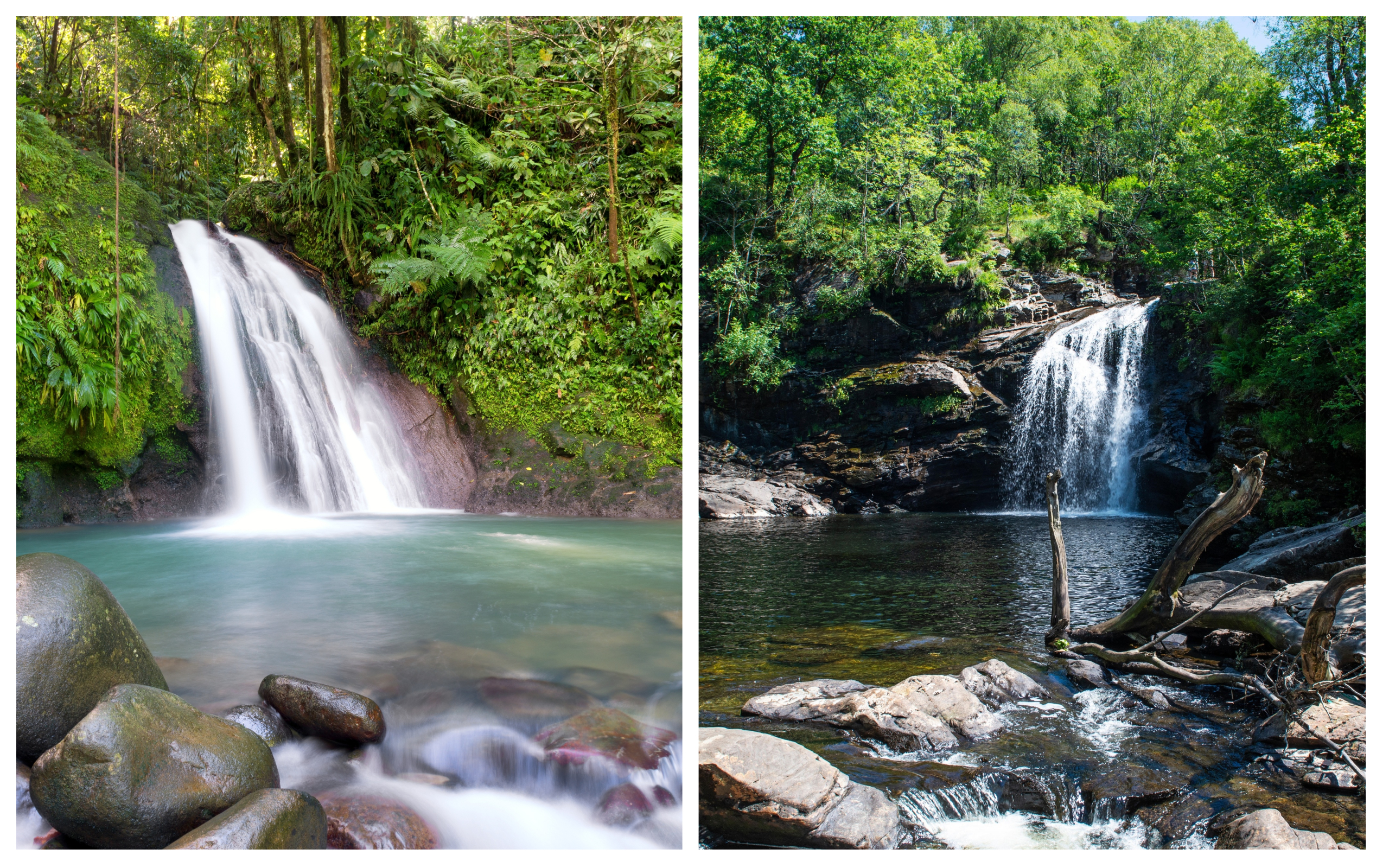 Left - Cascades aux Ecrevisses, Guadeloupe; Right - The Falls of Trossachs, Scotland (Thinkstock/Alamy/PA)
