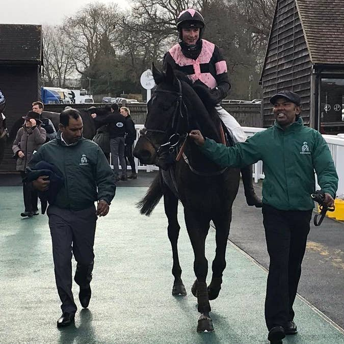 Third Wind walks in after his surprise win in the Silly Moo Sussex Cider Maiden Hurdle at Plumpton