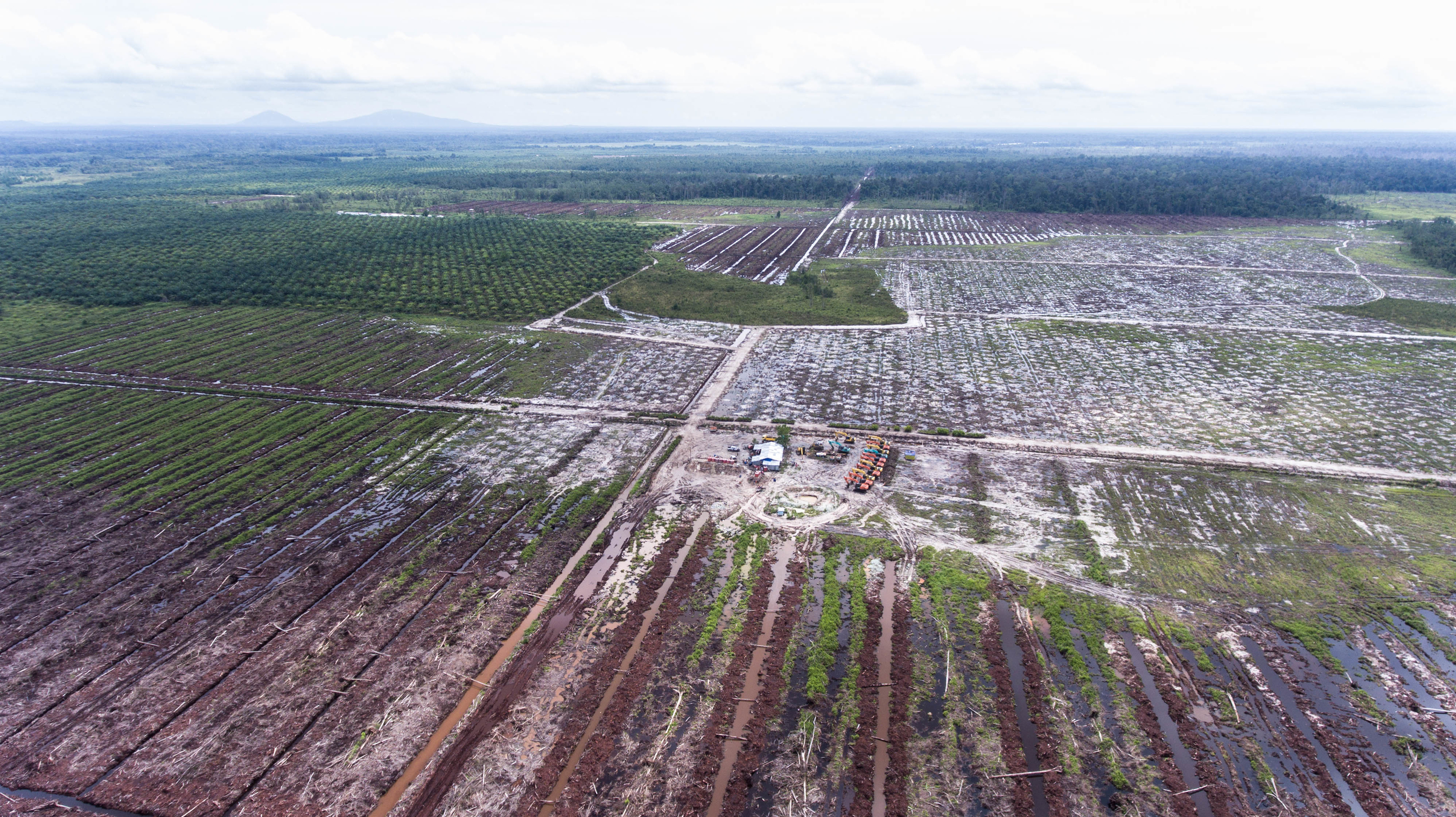 Aerial image of palm concession in West Kalimantan, Indonesia