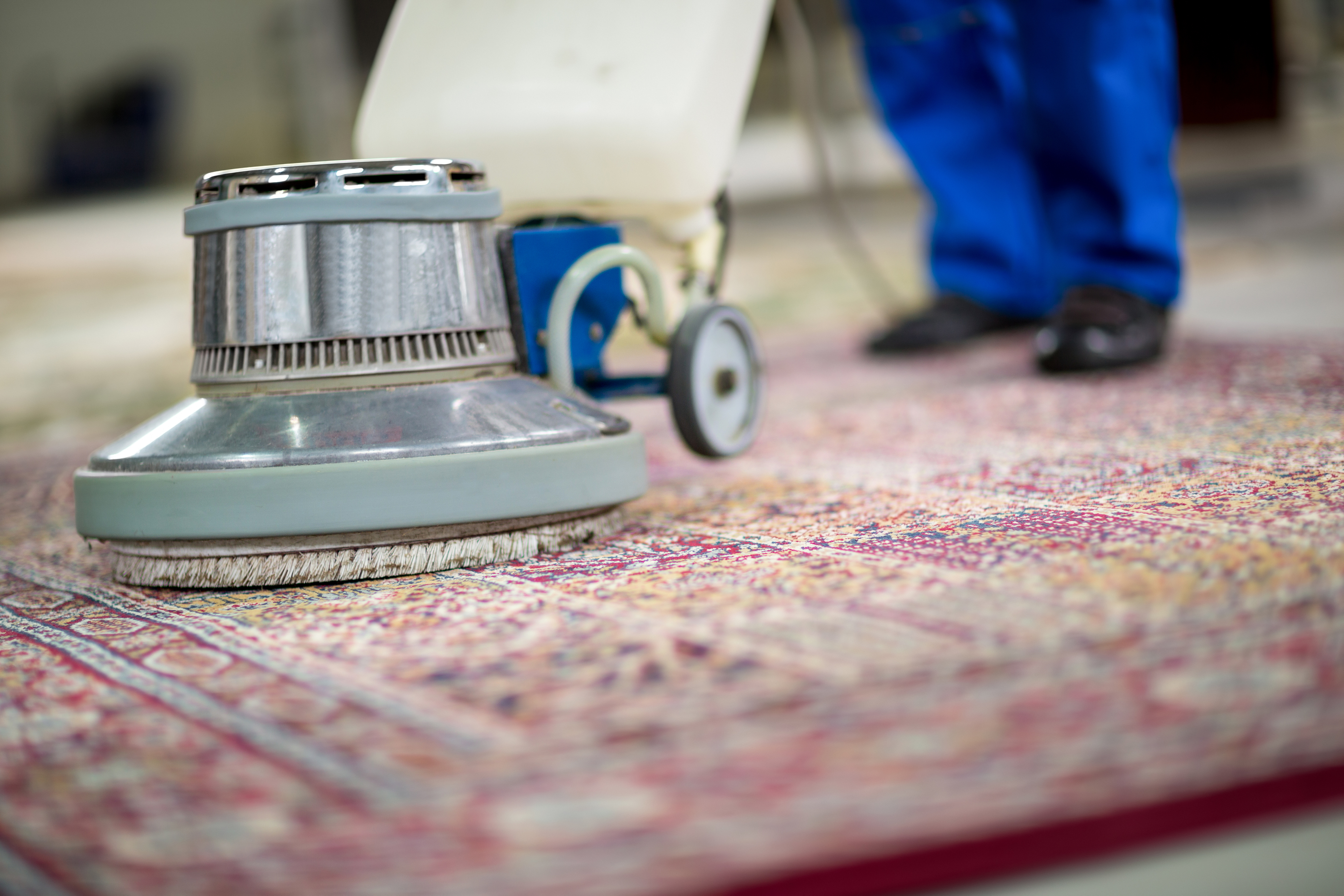 Carpet Cleaning Should You Hire A Professional Or Do It