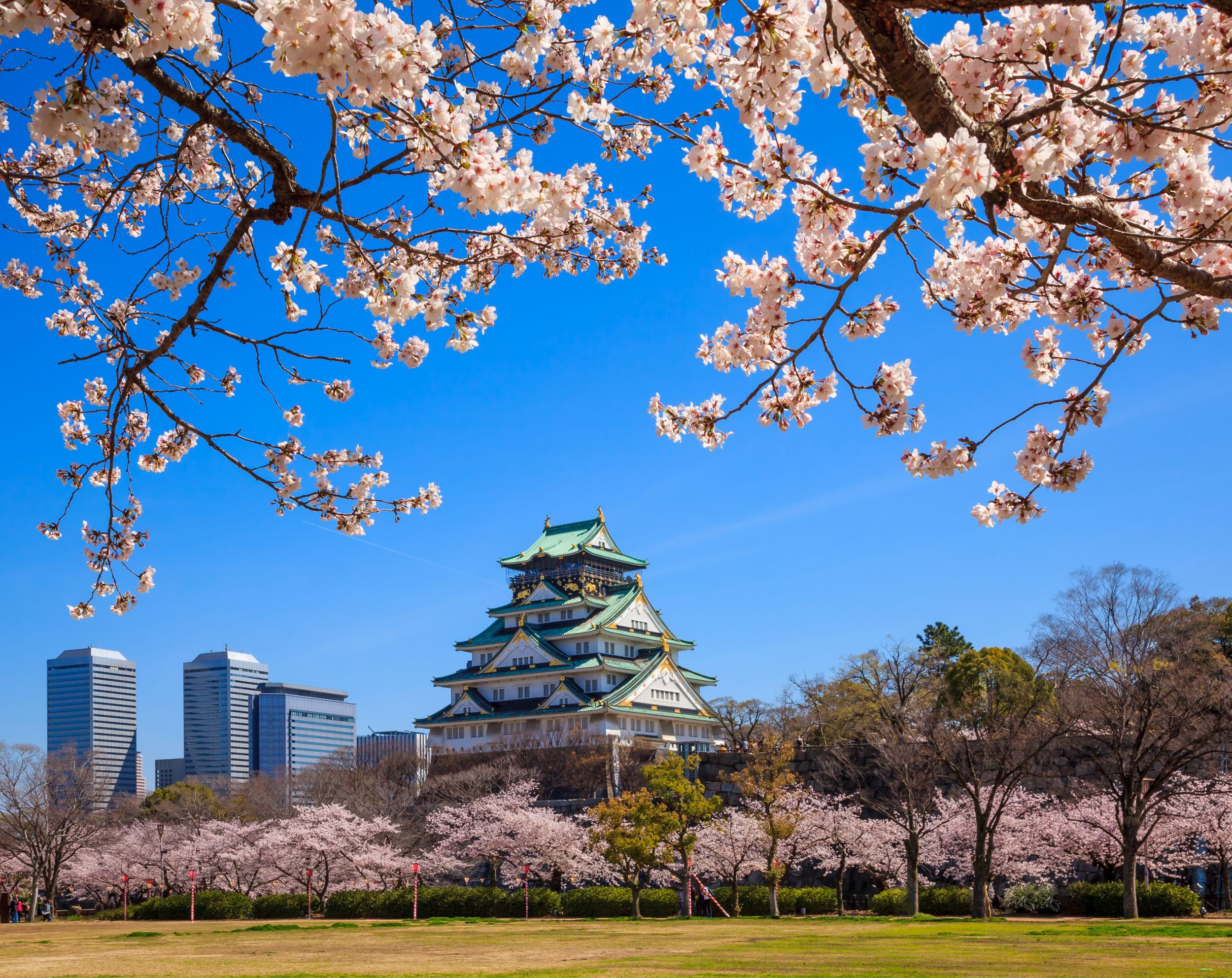 Osaka castle in cherry blossom season (Thinkstock/PA)
