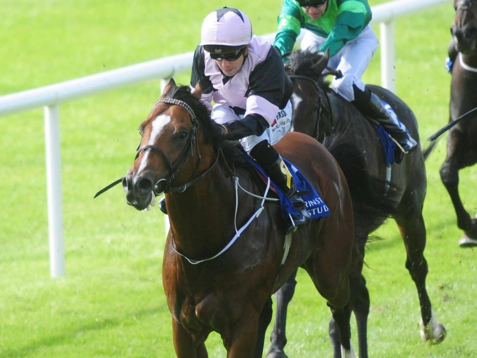 Hit The Bid will not be ready in time for Ascot (PA Wire)