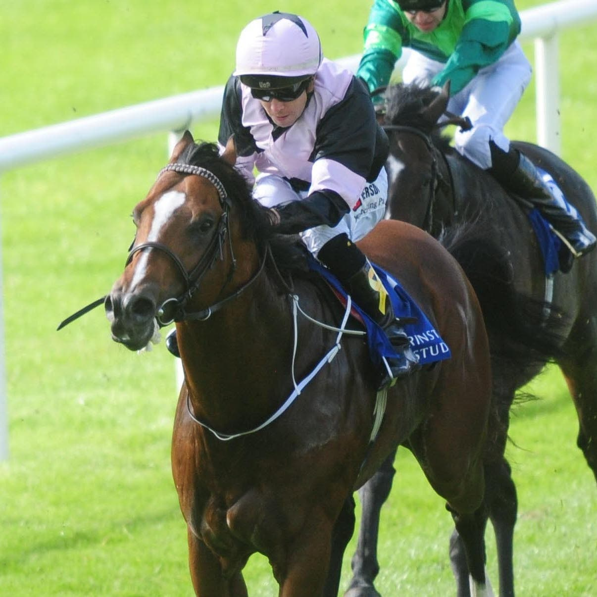 Hit The Bid will not be ready in time for Ascot