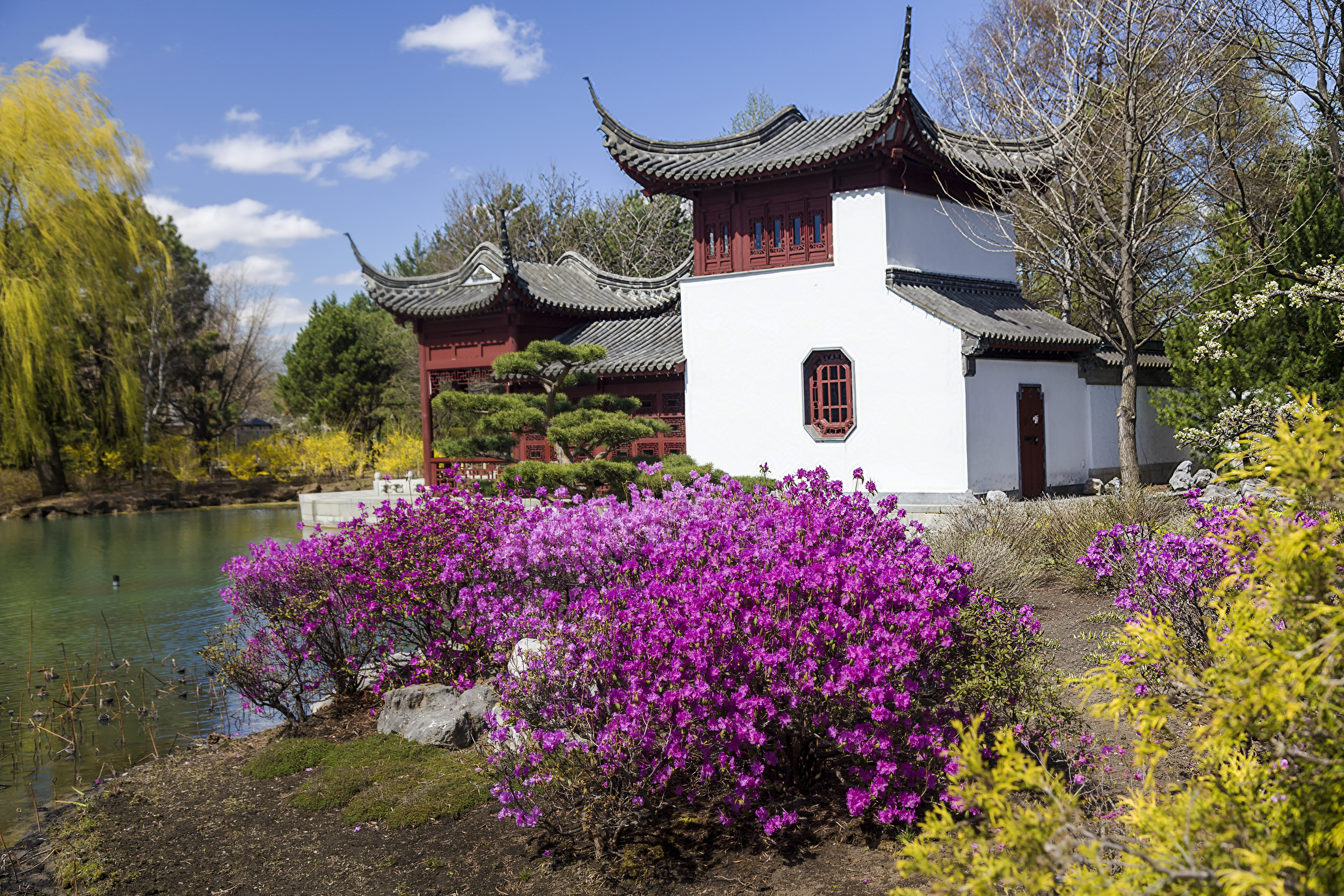Chinese Garden in the Montreal Botanical Garden (Thinkstock/PA)