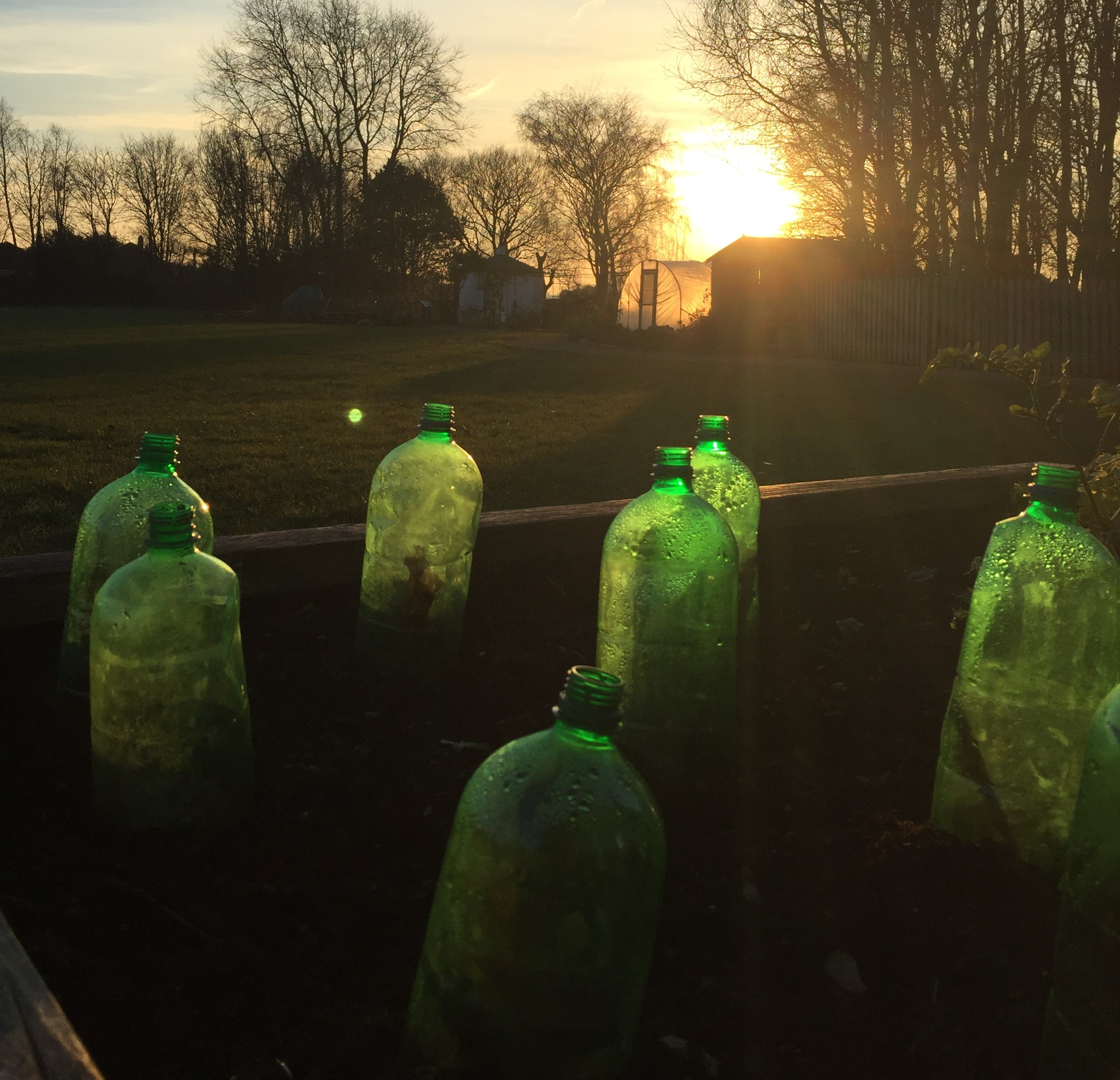 Make cloches out of upended clear plastic bottles (Wicor Primary School/PA)