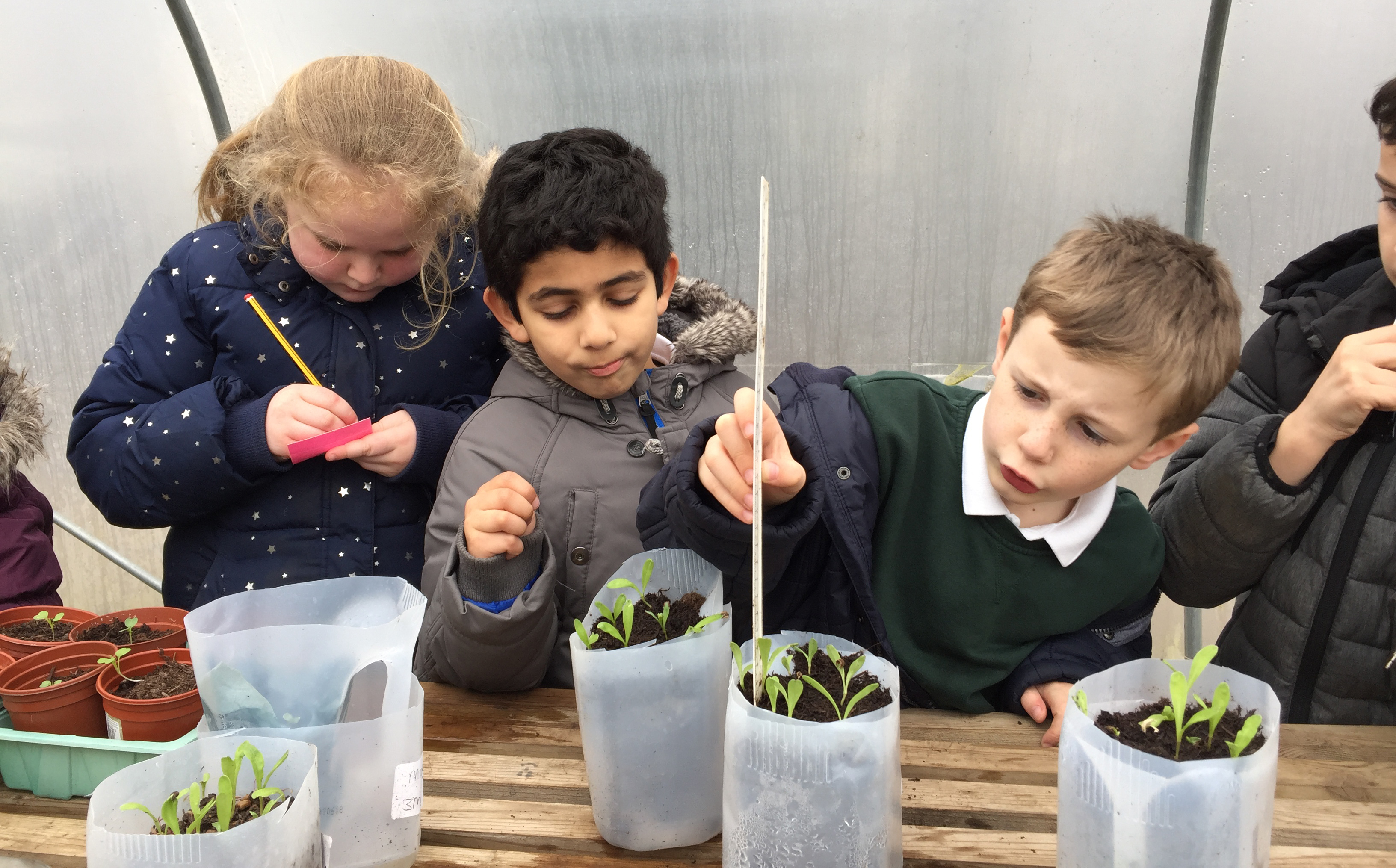 Using recycled plastic pots and containers is child's play (Wicor Primary School/PA)