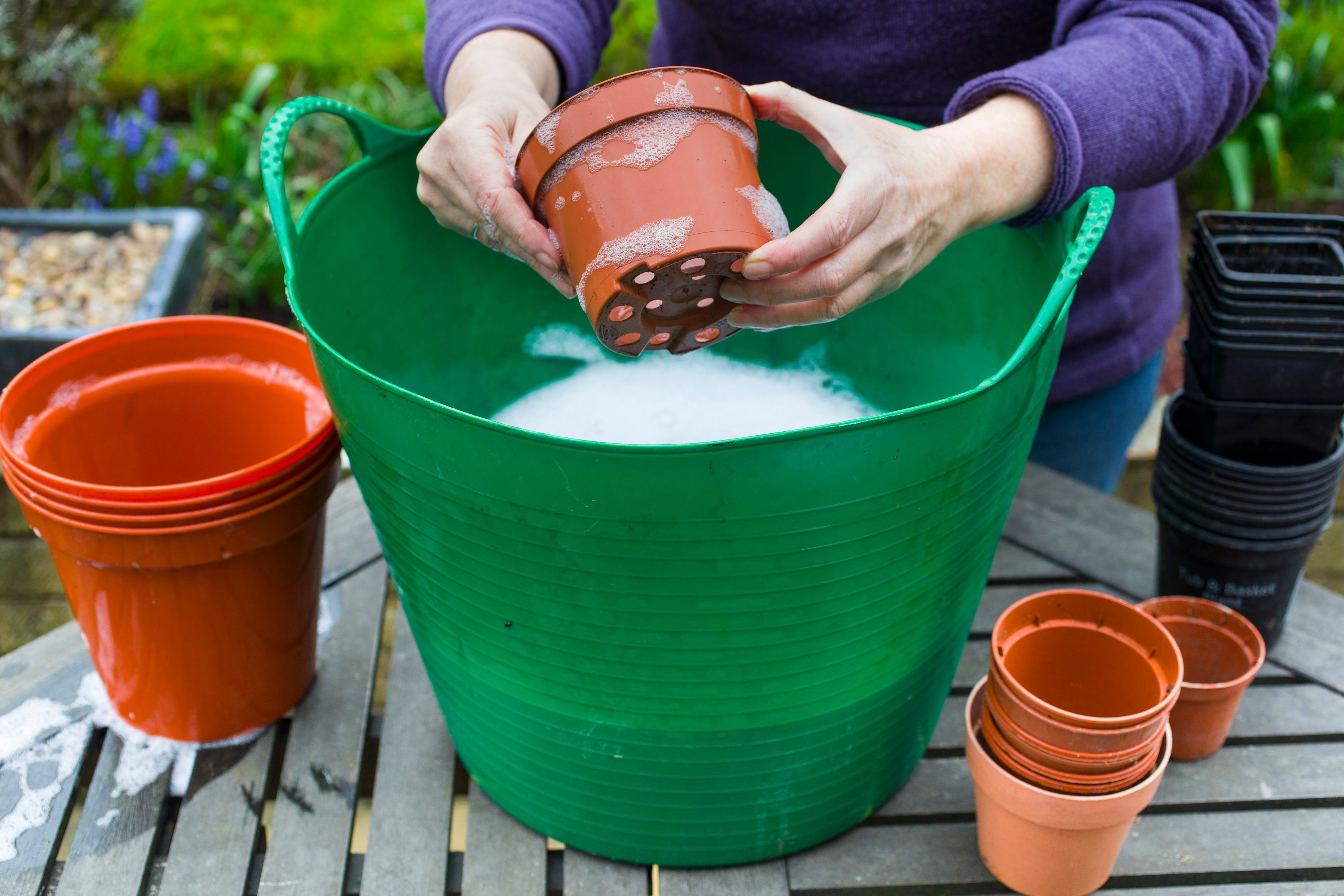 Wash used plastic pots before re-use (Neil Hepworth/RHS/PA)