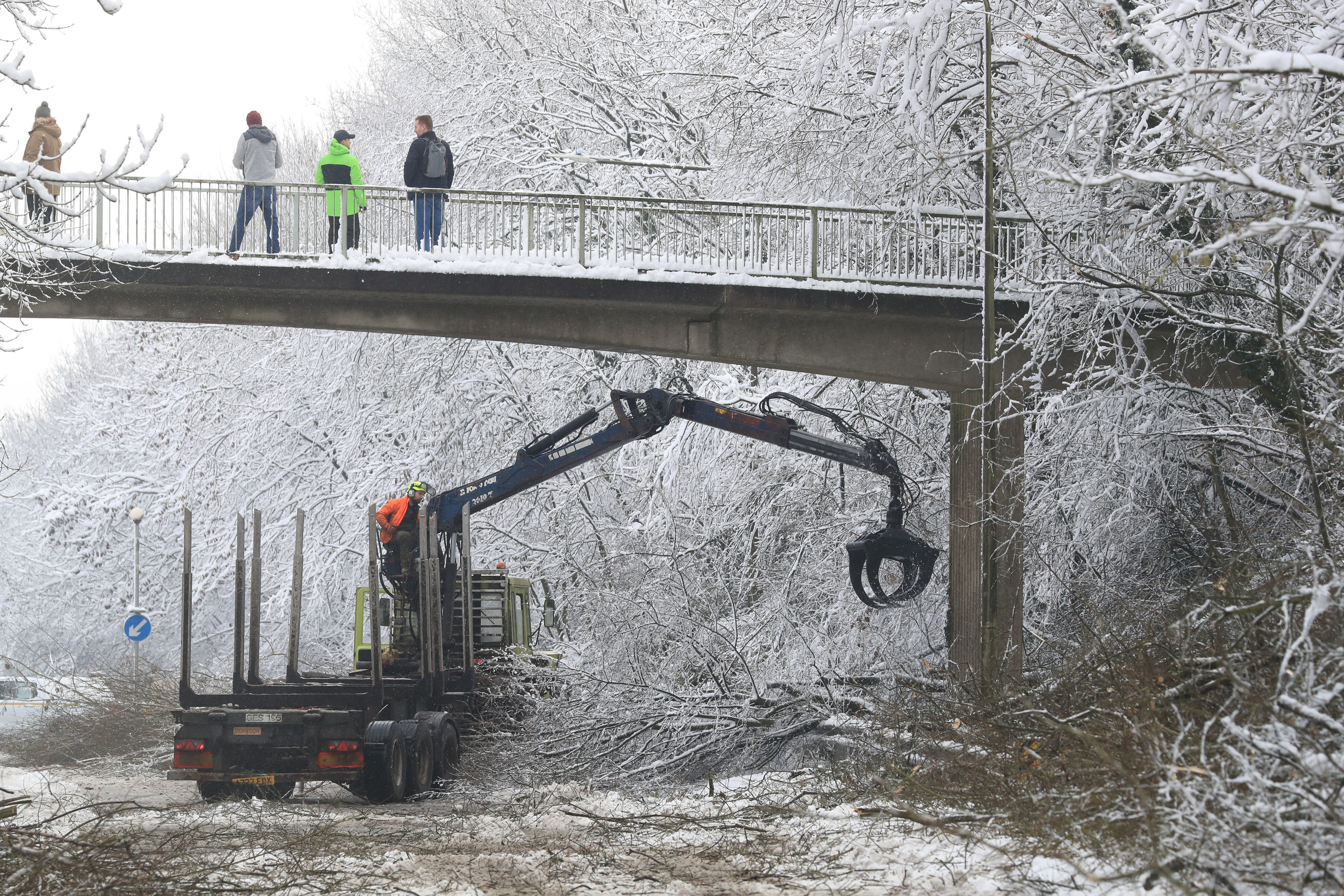 Diggers removes snow-covered trees
