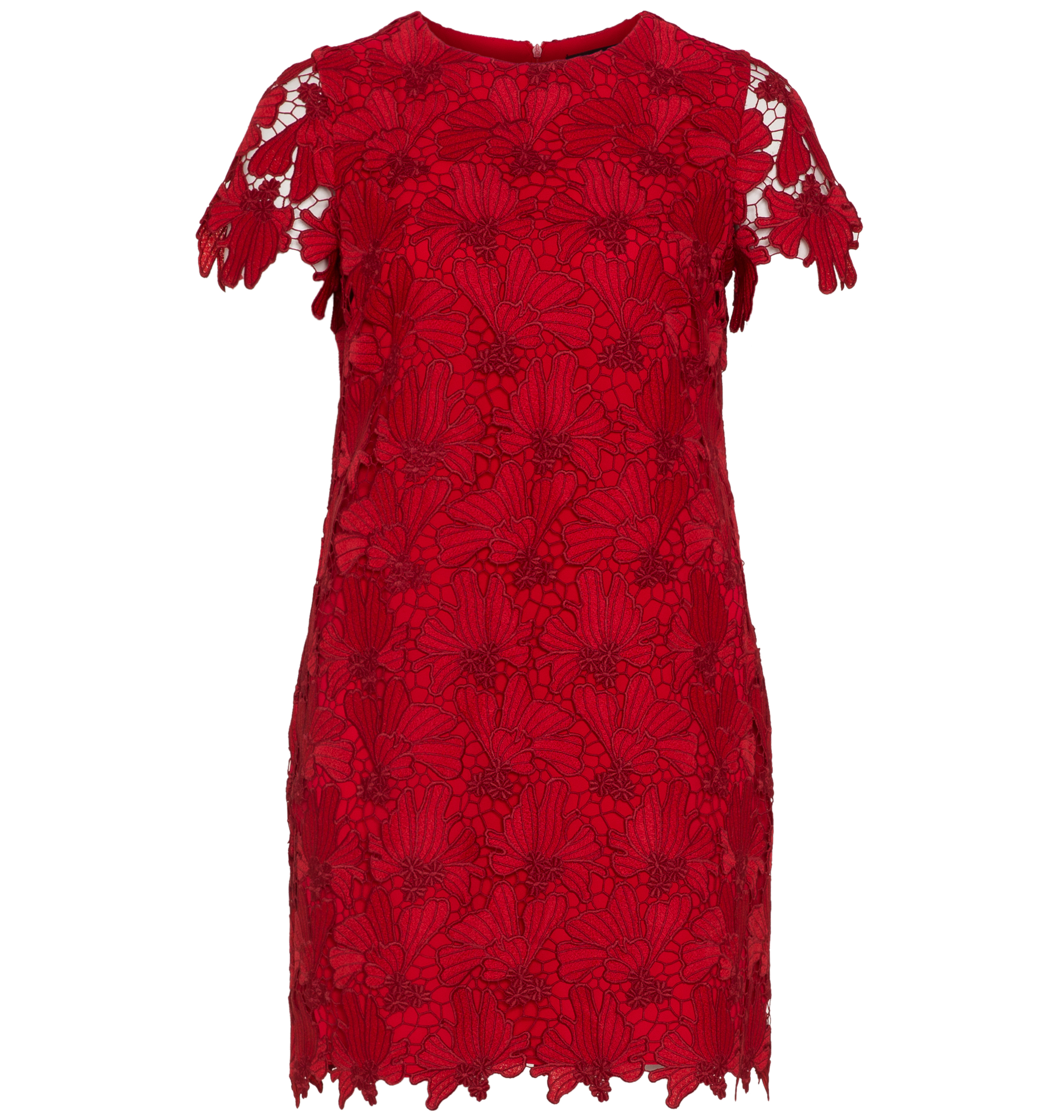Navabi Lace Dress