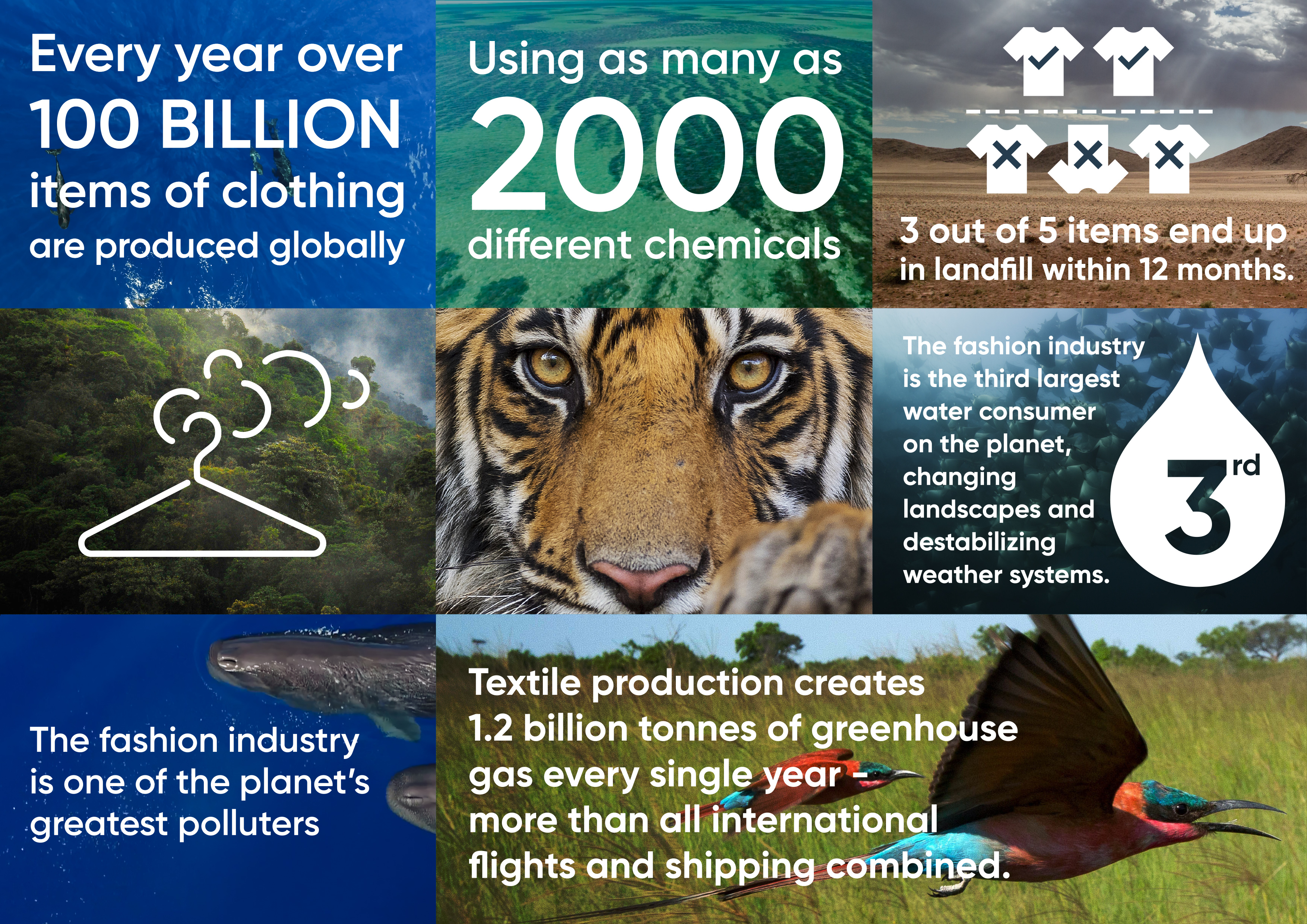 Fashion's impact on the environment