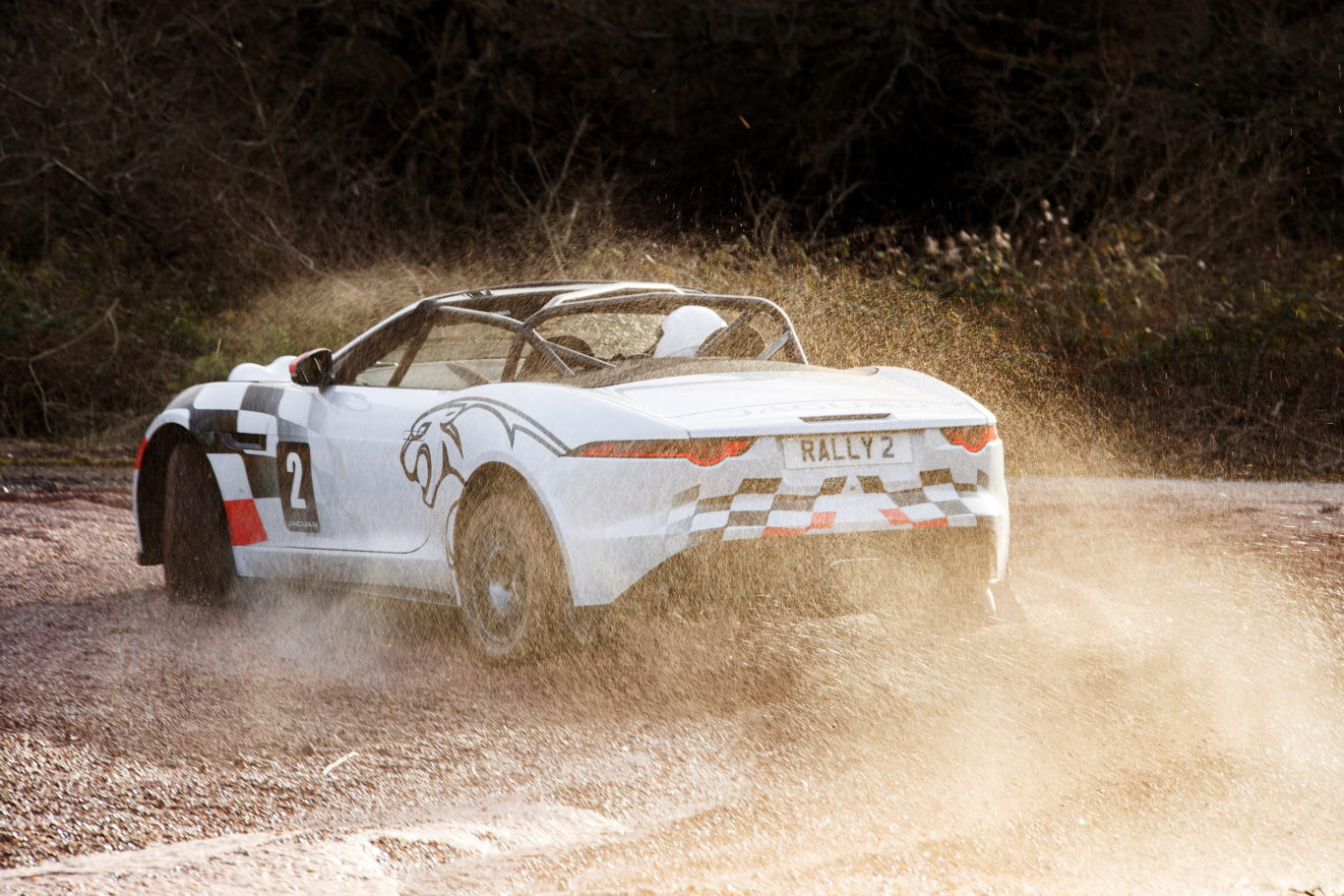 The F-Type rally car is exciting in the bends