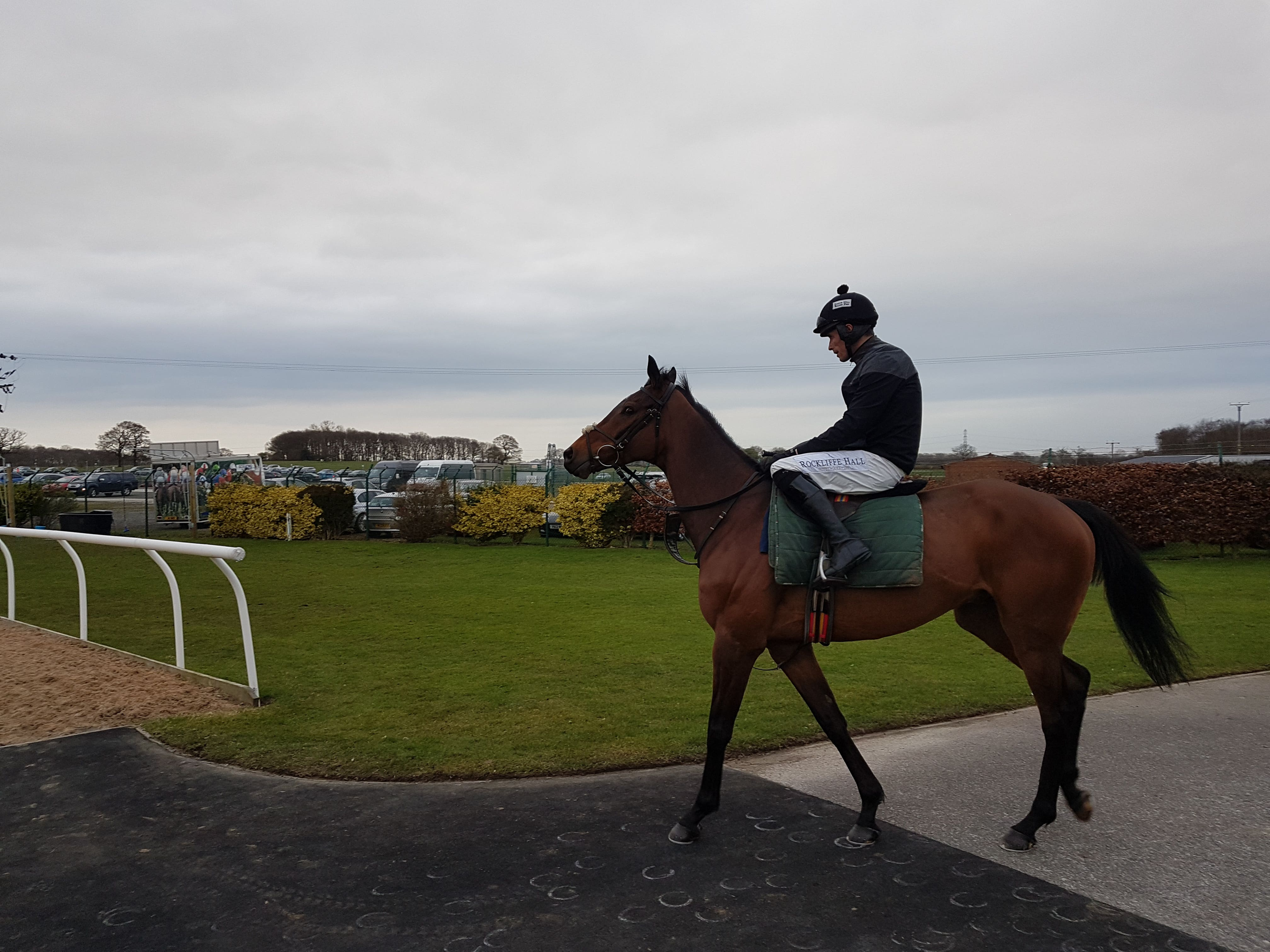 Blaklion heads out for his racecourse gallop with big-race pilot Sean Quinlan (Nick Robson)