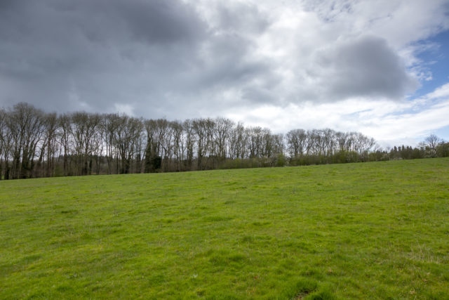 Land where the new orchards will be planted (John Miller/National Trust/PA)
