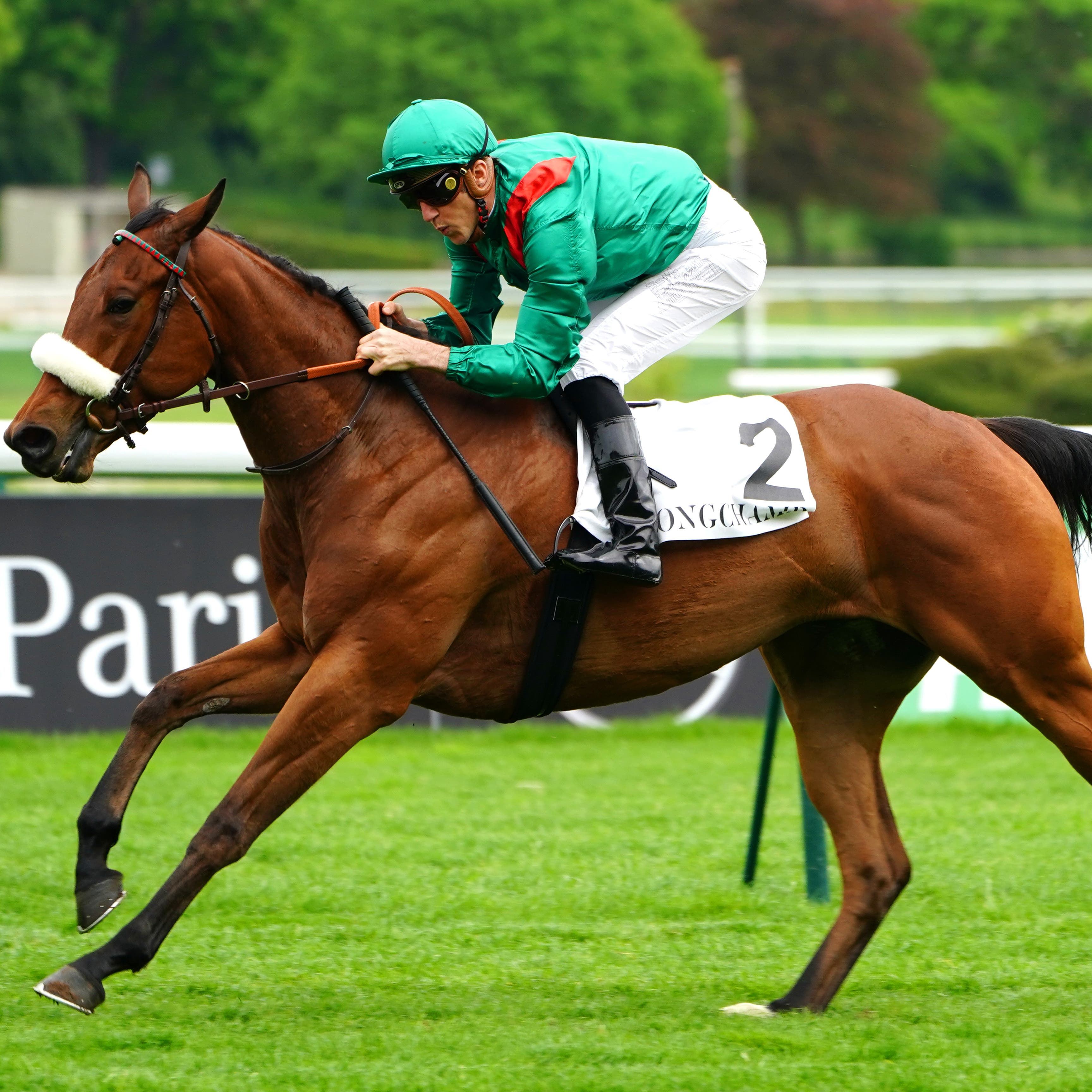 Siyarafina is set for the French Oaks