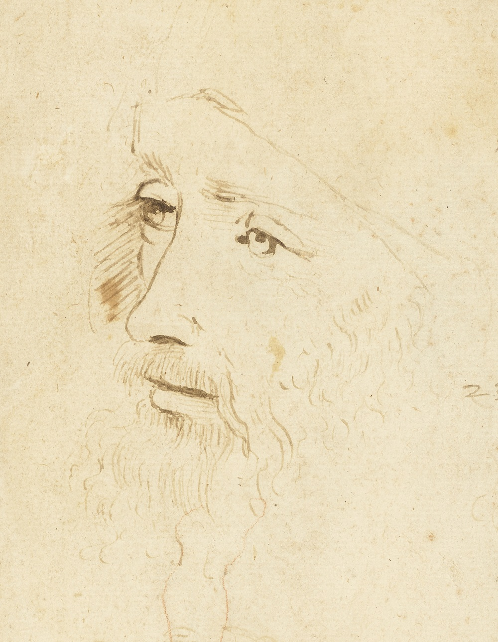 A sketch thought to be of Leonardo da Vinci, (1517 – 18), by an assistant