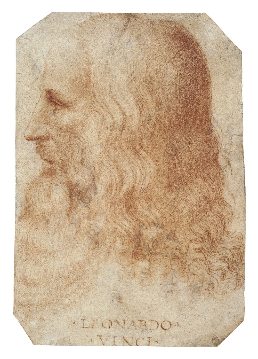 A portrait of Leonardo thought to be by Francesco Melzi