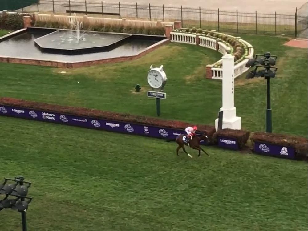 Newspaperofrecord was an easy winner at last year's Breeders' Cup meeting (PA)
