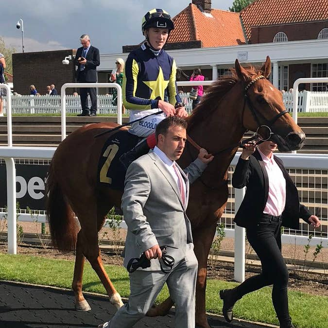 Daayeh looked a Royal Ascot prospect in winning at Newmarket