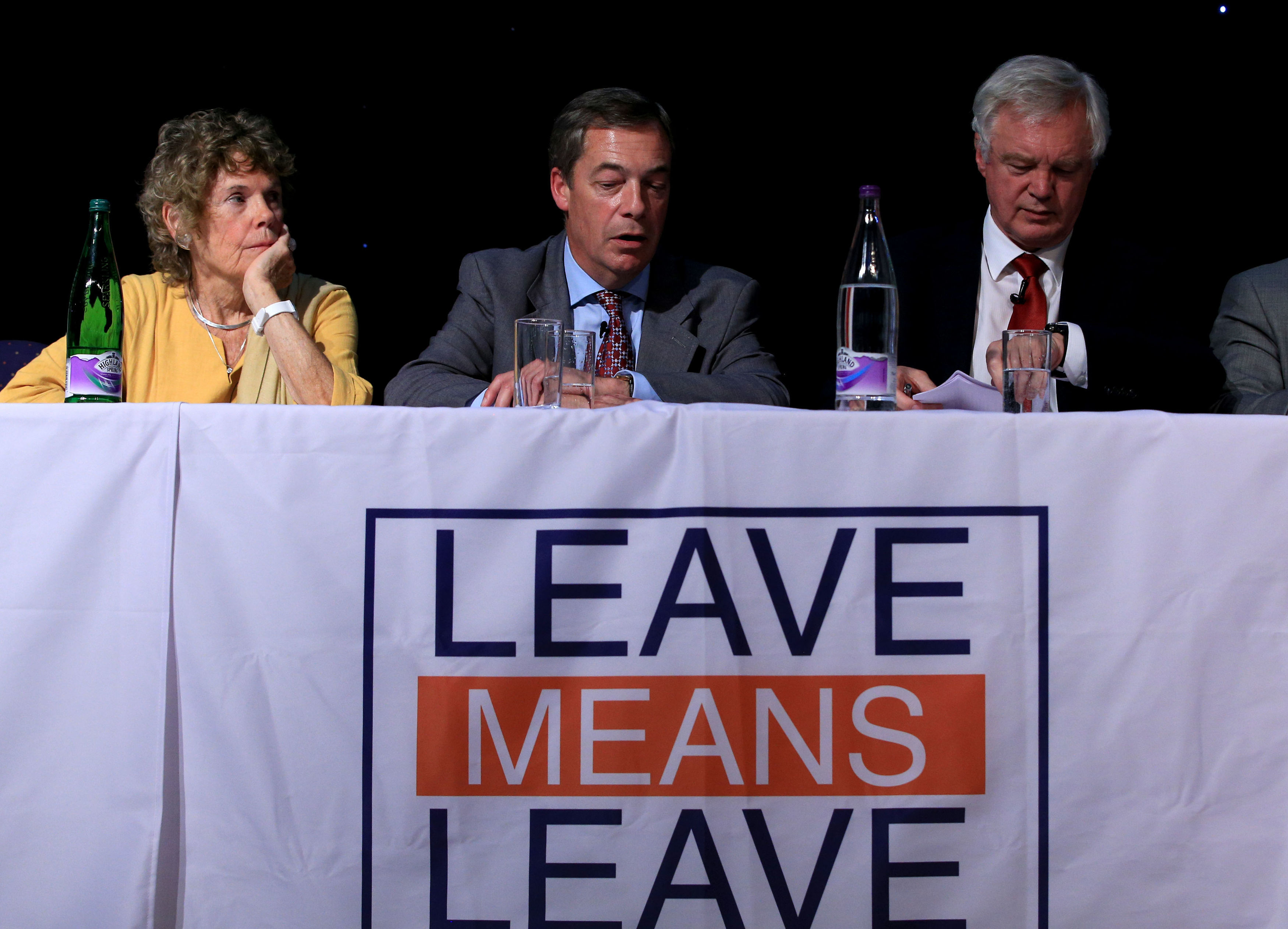 Kate Hoey, Nigel Farage and David Davis at a Leave Means Leave rally in Bolton
