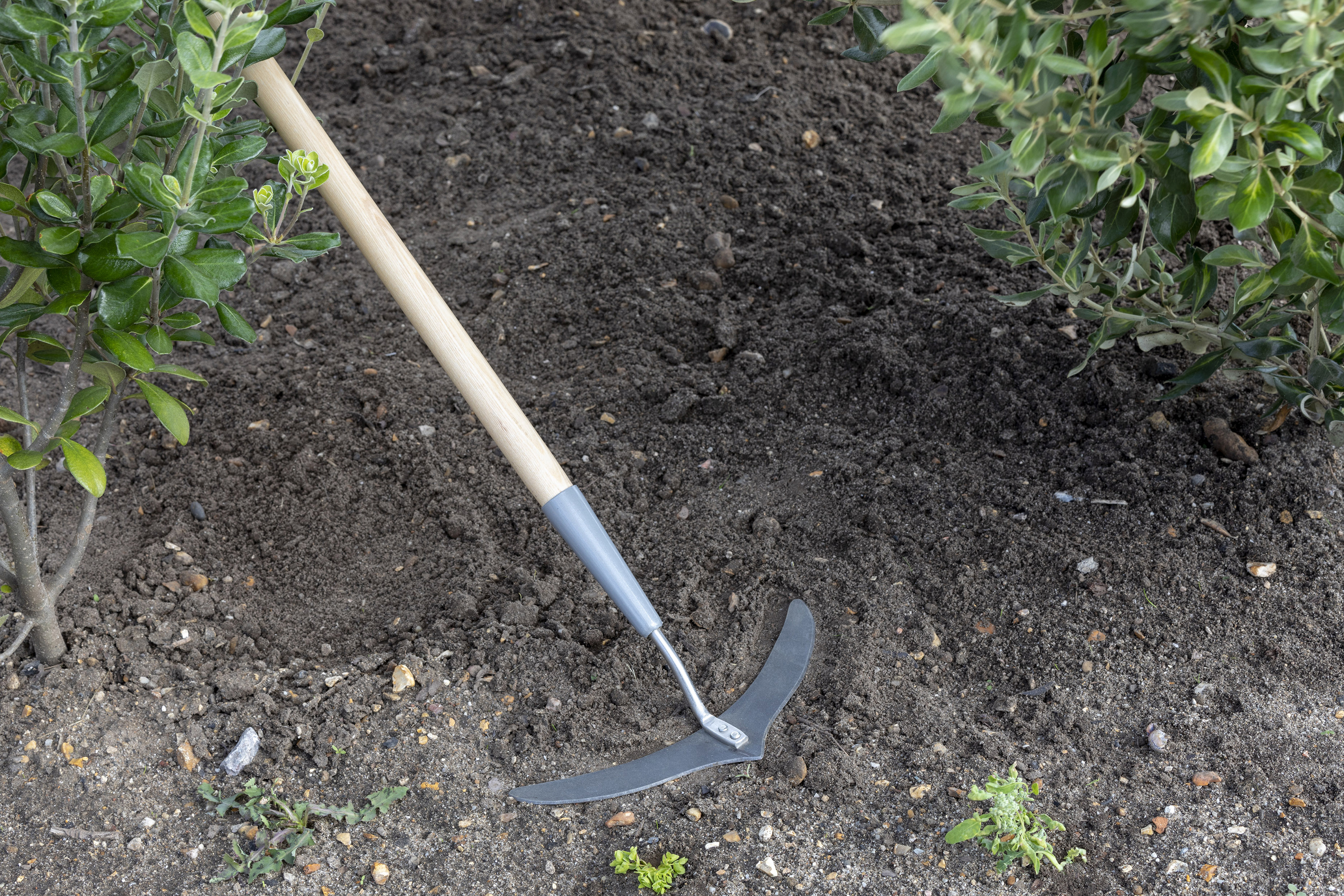 Make light work of weeding with this Super Slice (Burgon & Ball/PA)