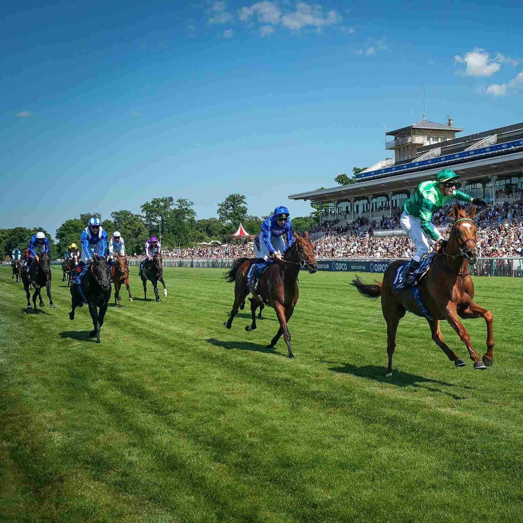 Motamarris (right, blue and white cap) ran a good race in the French Derby
