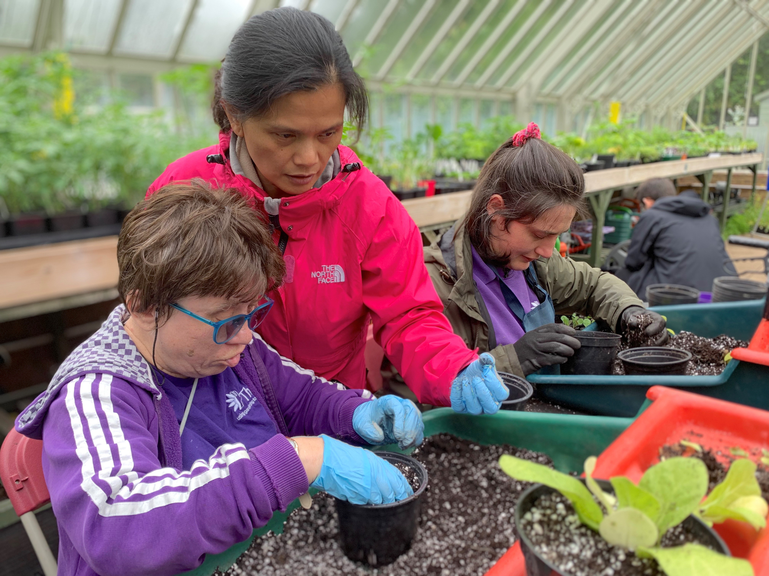 Horticultural therapy helps with both mental and physical health (Thrive/PA)