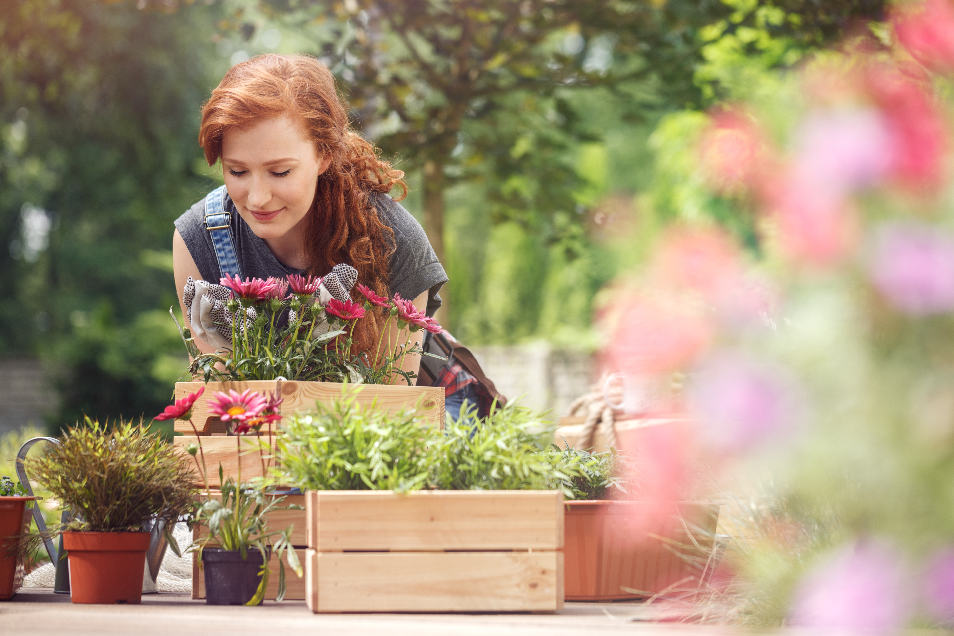 People who are not disabled can destress with gardening (iStock/PA)