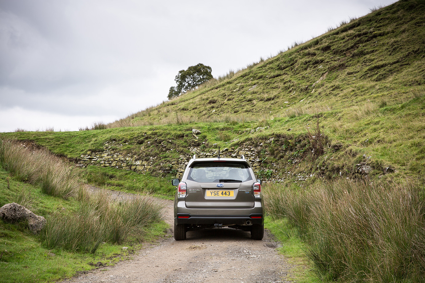Country lanes are where the Outback thrives