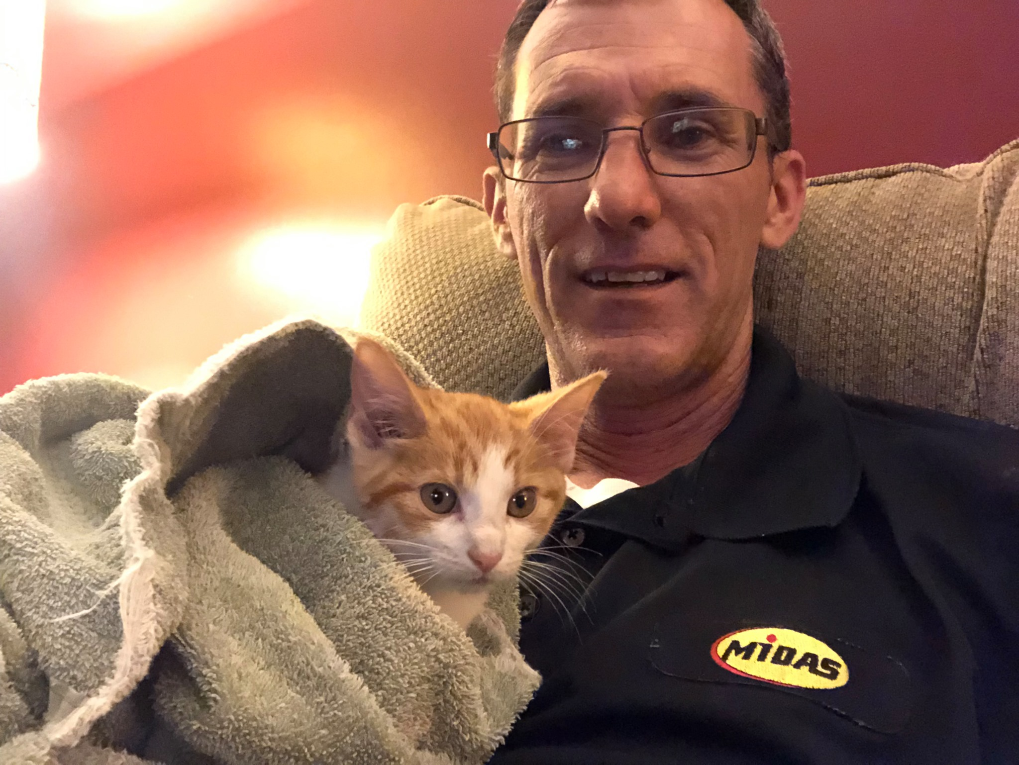 A kitten with Scott Bourne