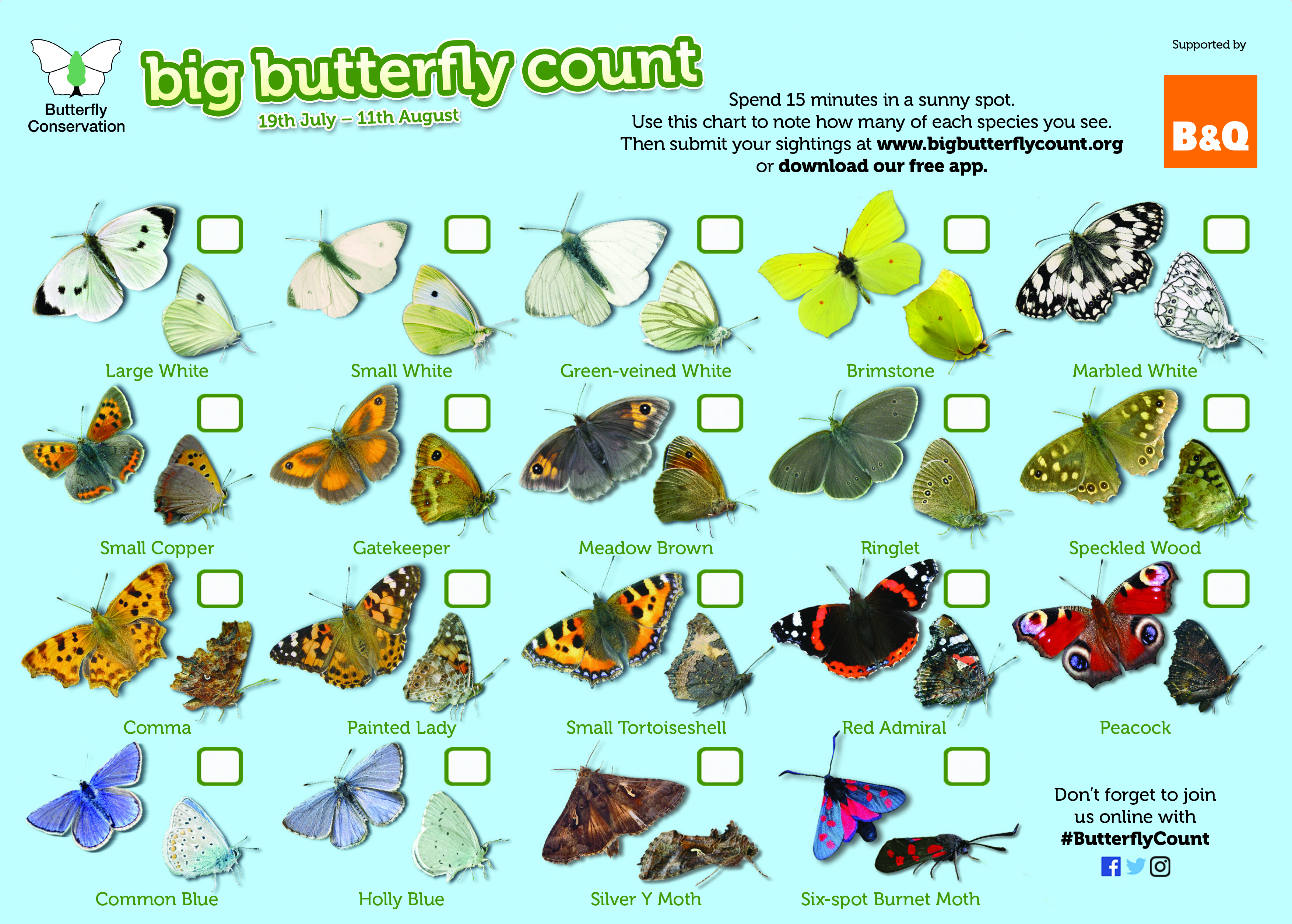 Wildlife lovers are asked to record 17 species of common butterfly and two day flying moths (Butterfly Conservation/PA)