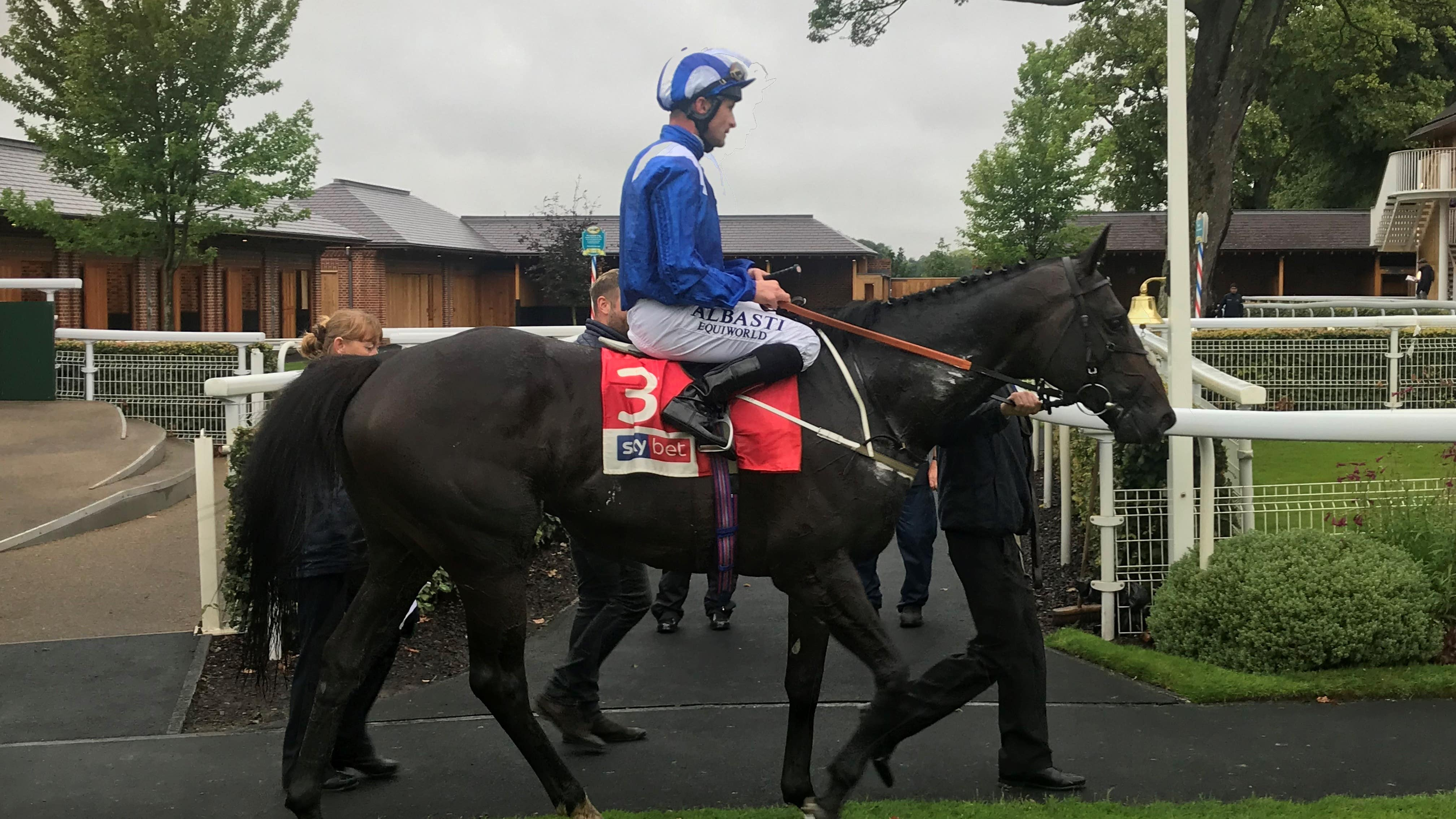 Elarqam produces dominant display in Sky Bet York Stakes