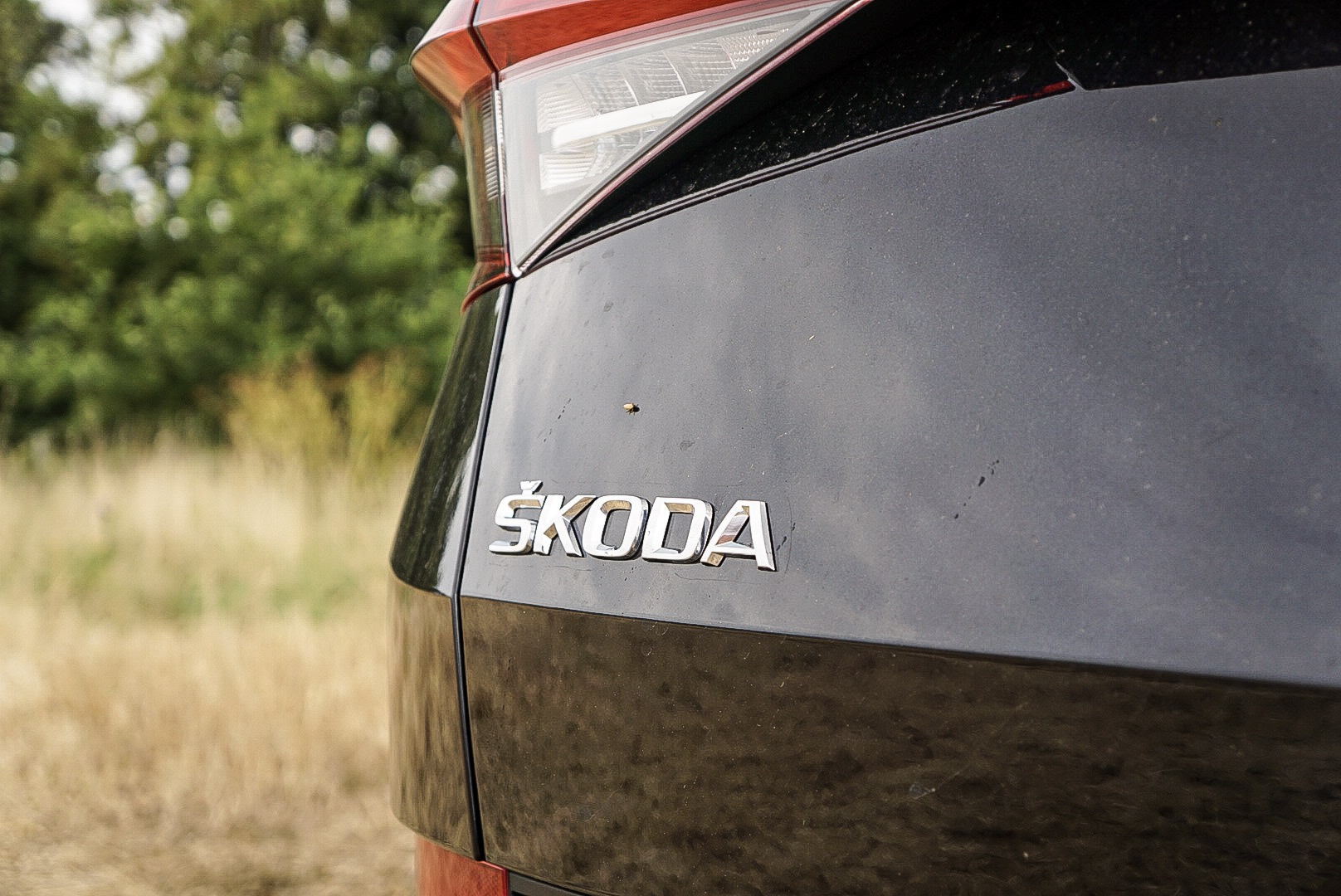 The Kodiaq is a great family car option