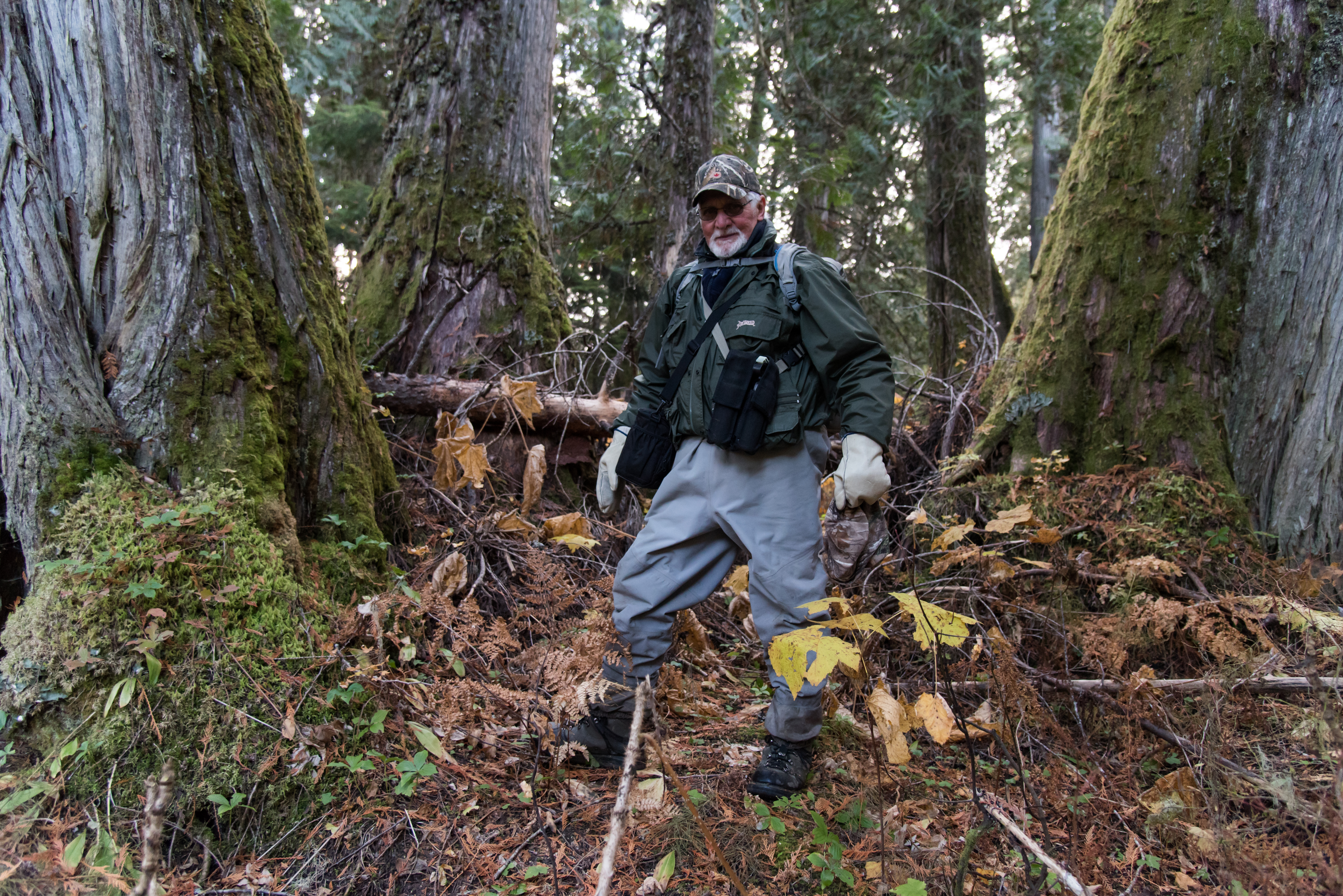 Gary Zorn, The Bear Whisperer, stands in an ancient cedar forest (Sarah Marshall/PA)