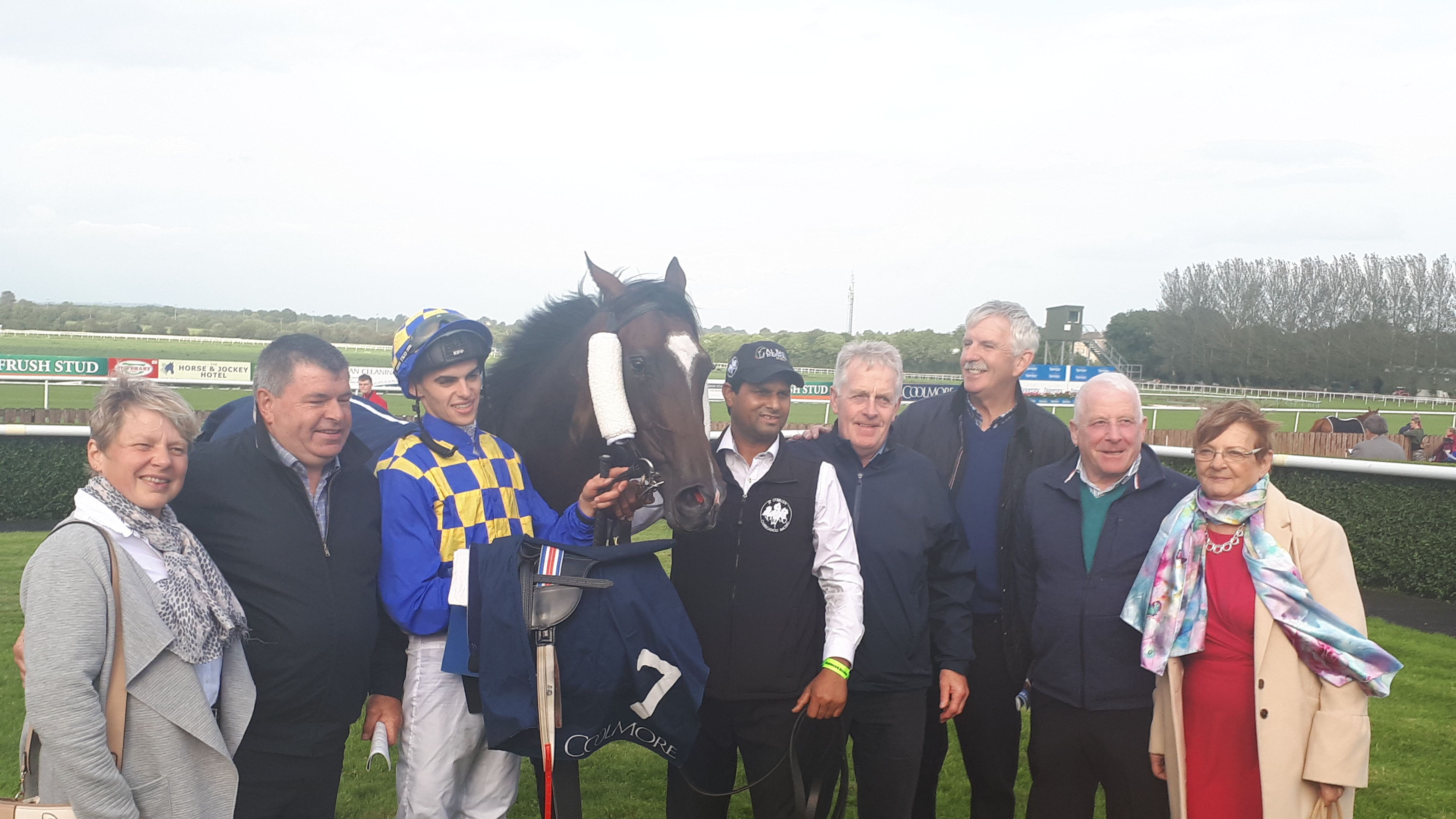 Image result for waitingfortheday horse