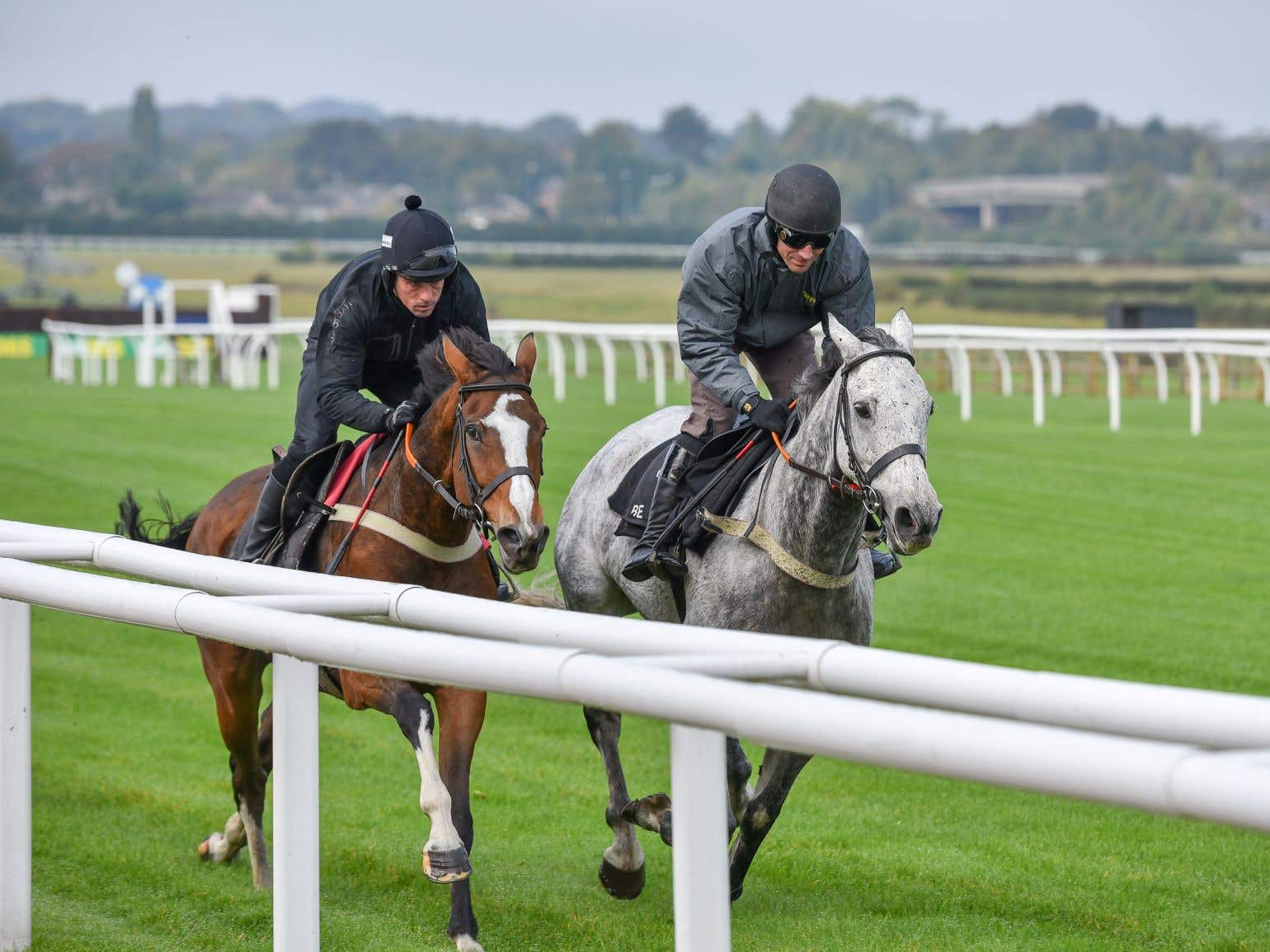 Vintage Clouds (right) has Aintree on his agenda once more (Go Racing In Yorkshire)