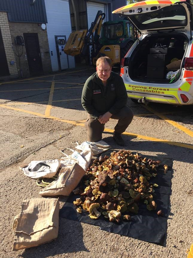 A haul of 49kg of mushrooms was recovered (City of London Corporation/PA)