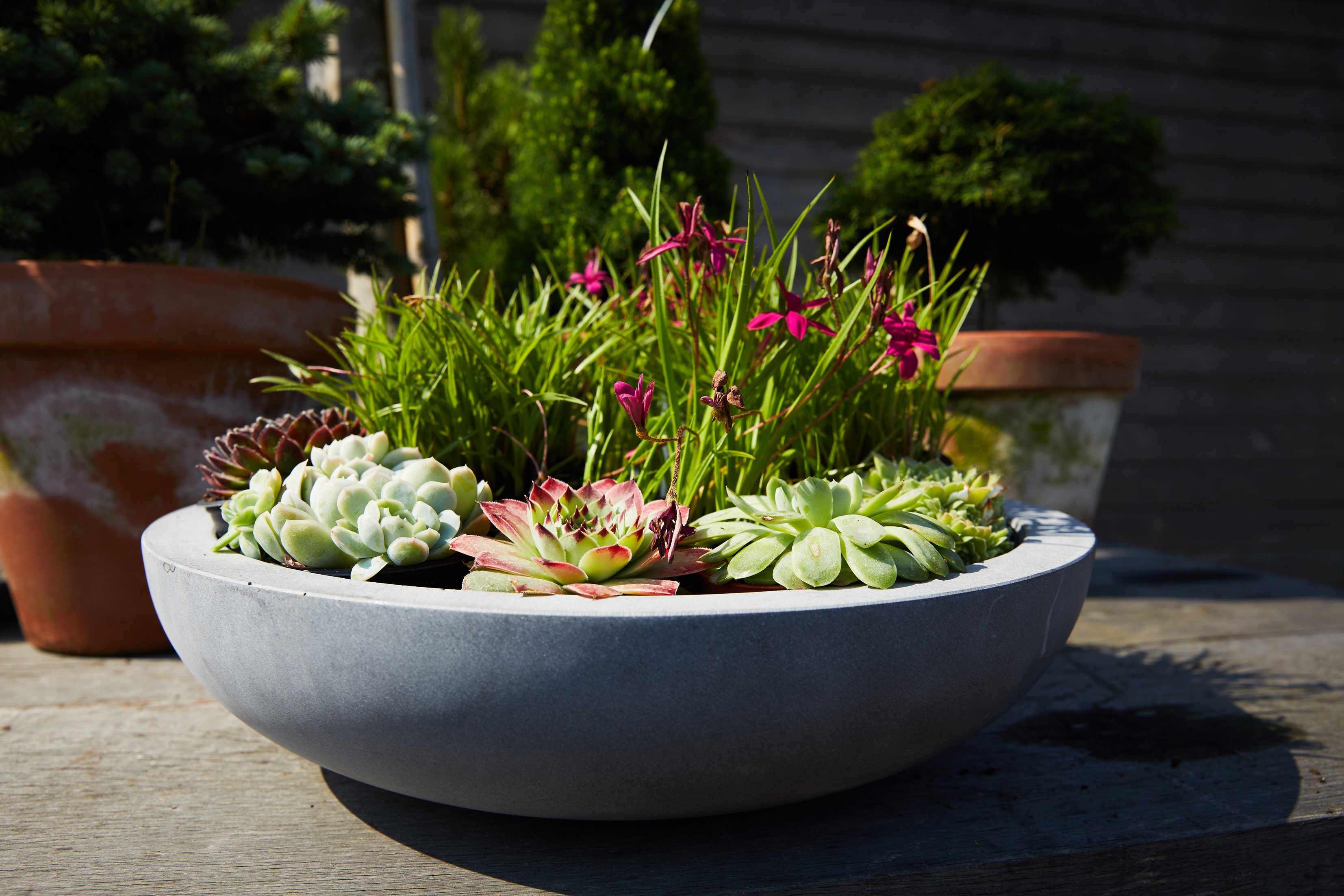 Stylish pot-planting (The Pot Company/PA)