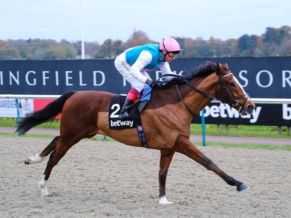 Crossed Baton took Listed honours at Lingfield (Hoycubed Photography)
