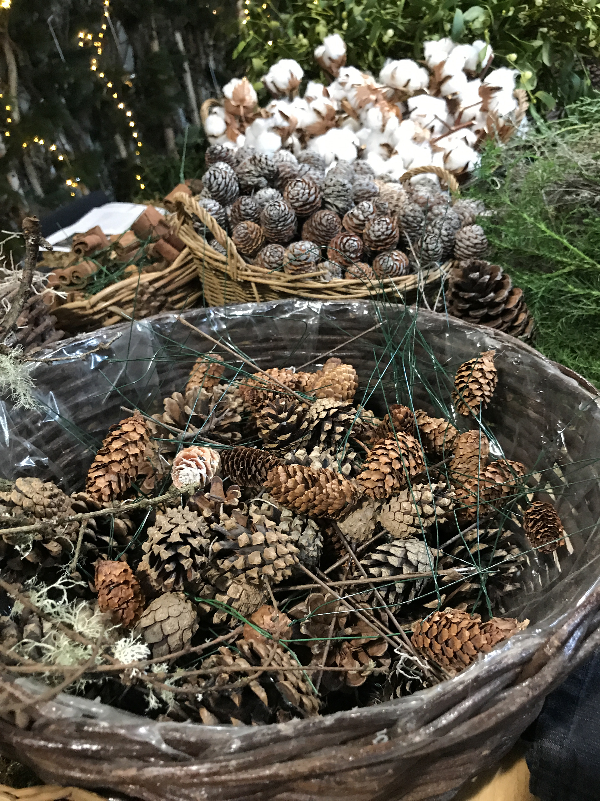 You may have to buy extra pine cones to fill the gaps (Hannah Stephenson/PA)