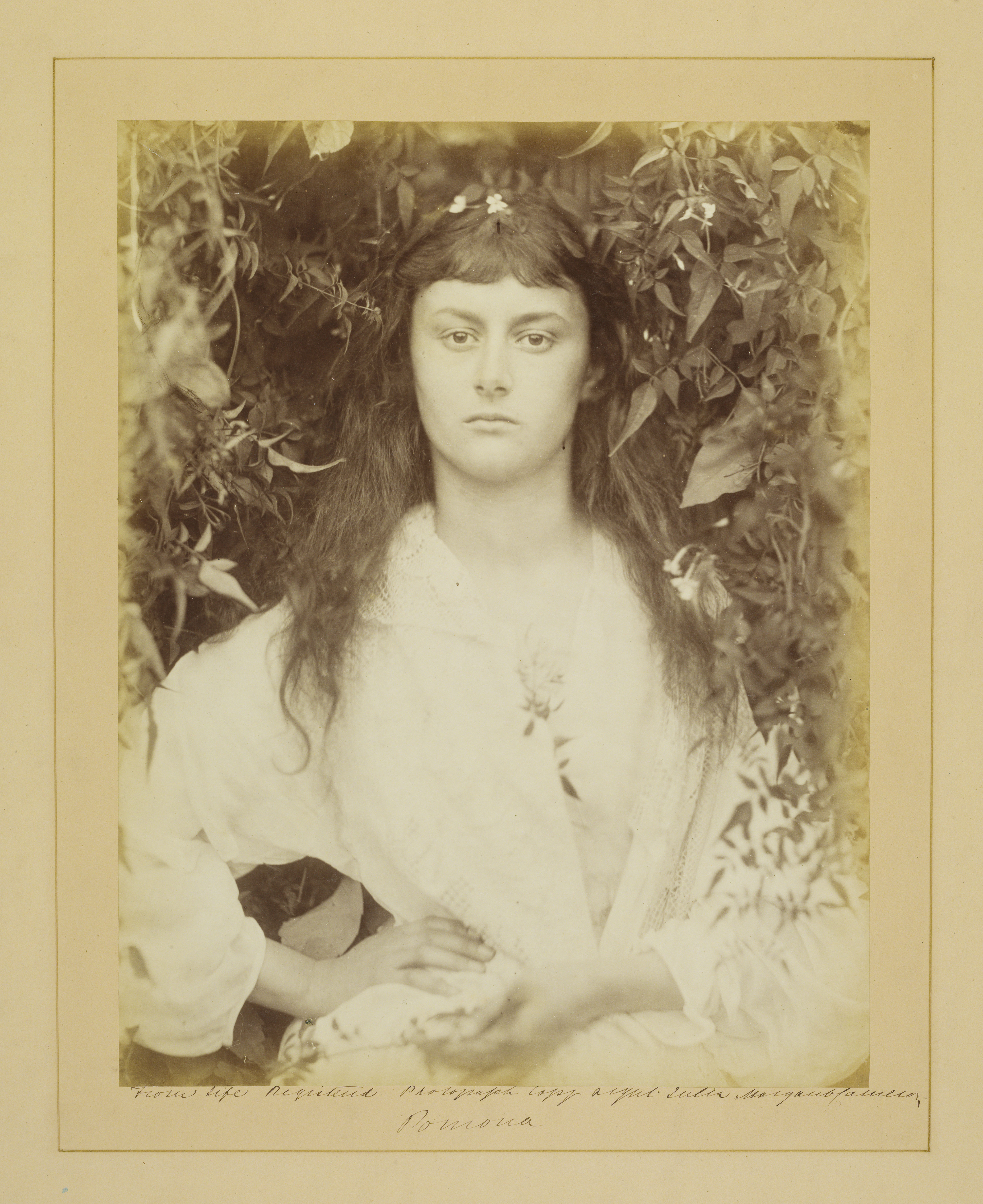 Photograph of the 'real' Alice Liddell, by Julia Margaret Cameron