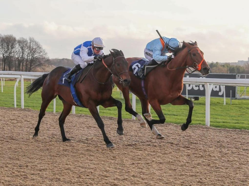 Raymond Tusk (right) just got the better of Funny Kid at Newcastle (Grossick Racing Photography)