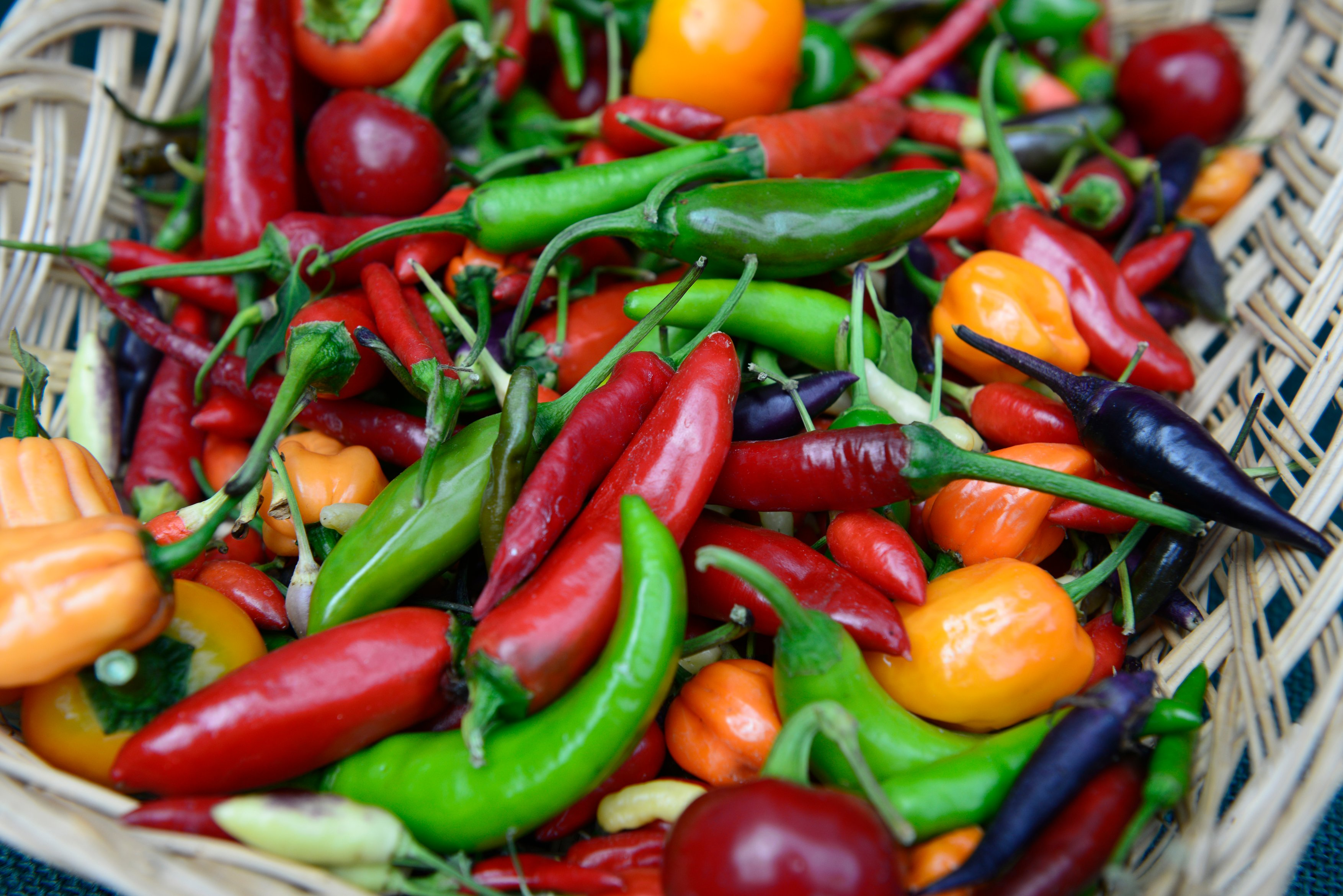 Grow your own is set to increase, with chillies a firm favourite (RHS/Bethany Clarke/PA)