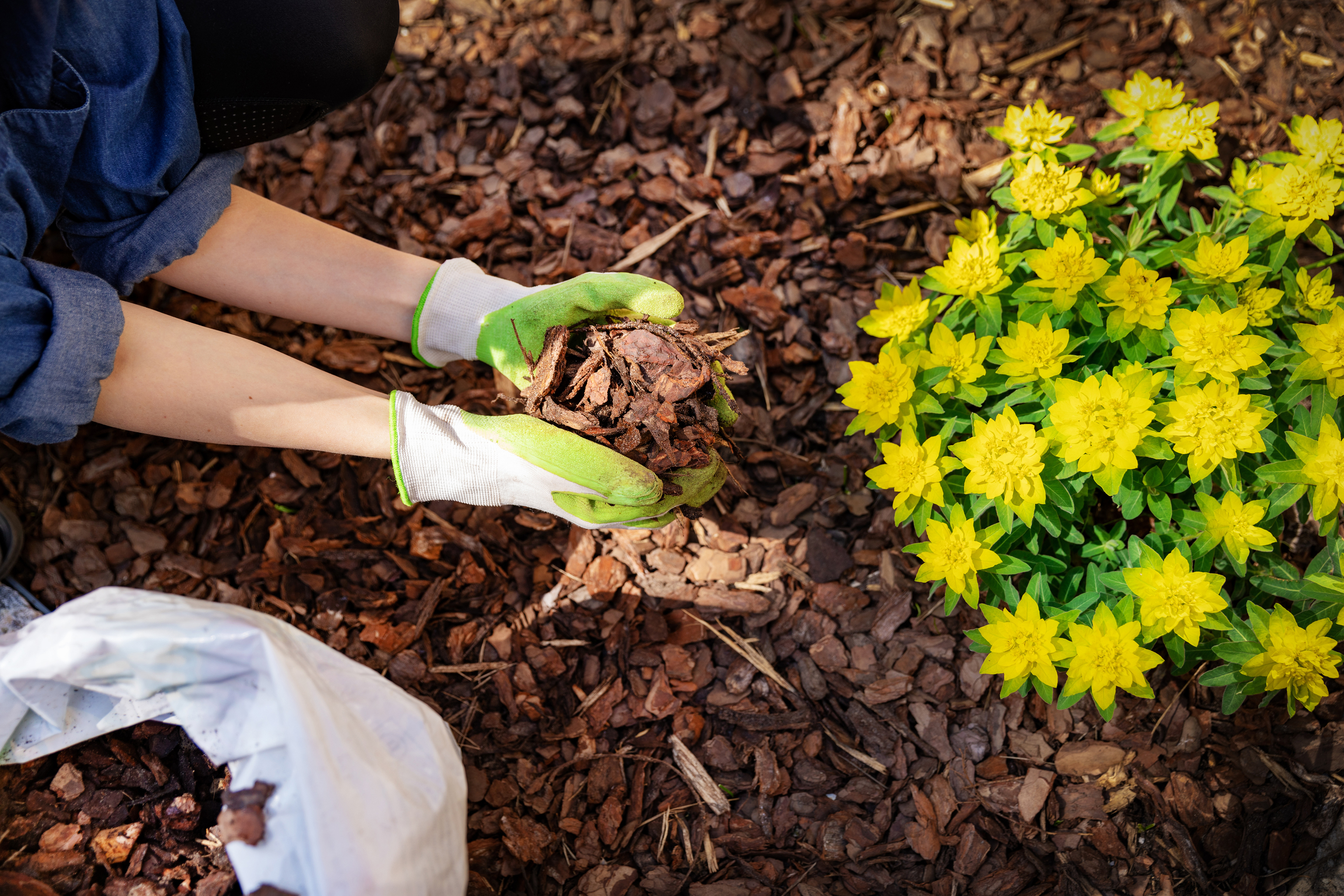 Spreading mulch to suppress weeds (iStock/PA)