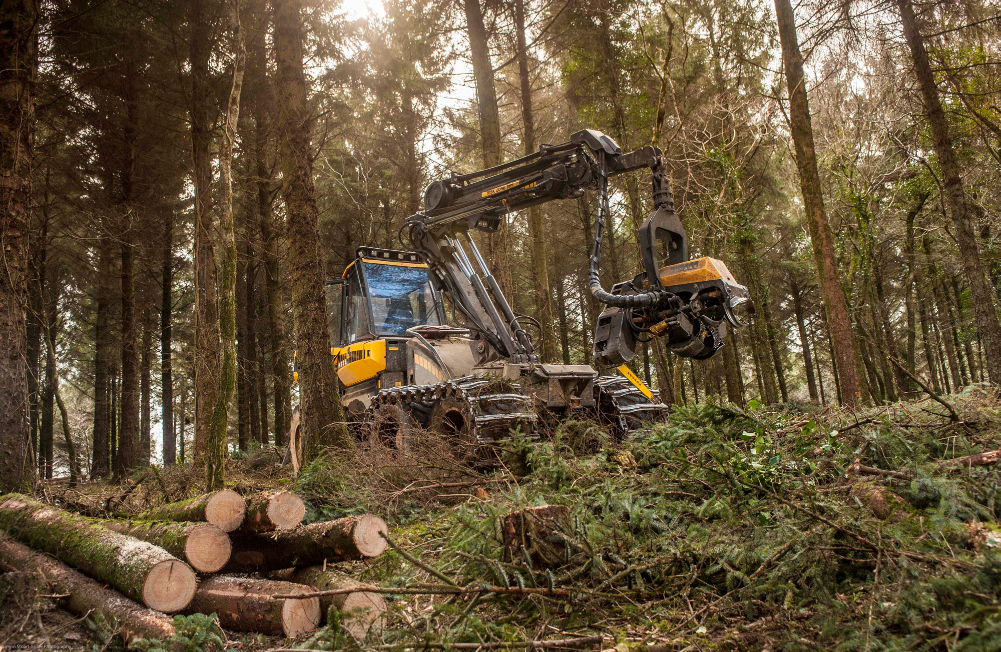 The tours will cover issues such as sustainable timber production and how woodlands are designed to create habitats for wildlife (Forestry Commission/PA)