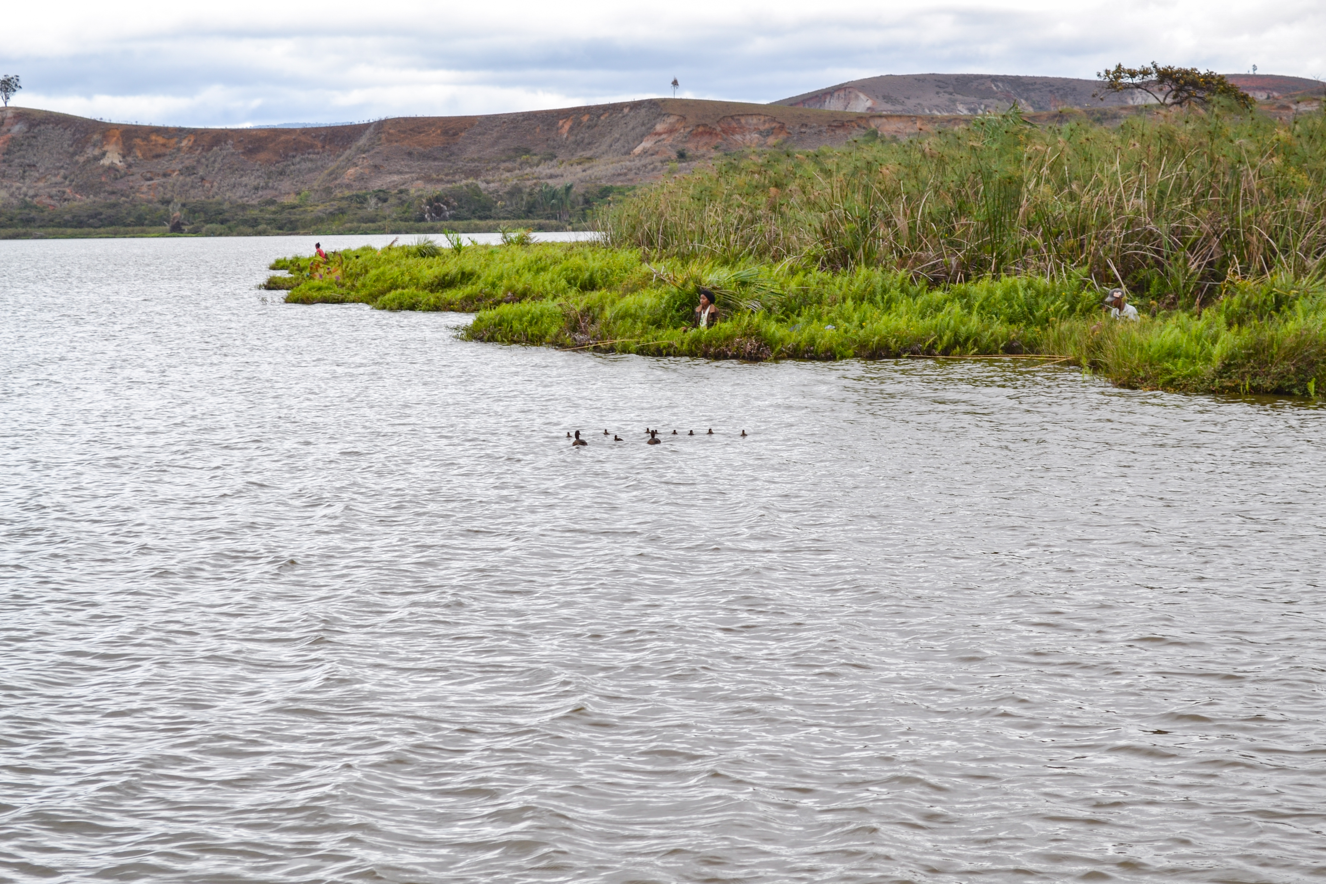 Conservationists are working to improve Lake Sofia for the pochards and local people (Durrell Madagascar/PA)