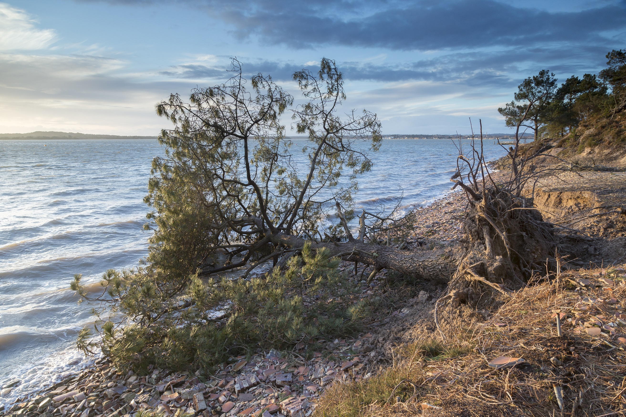 Coastal areas such as Brownsea Island, Dorset, are among the most at risk (John Miller/National Trust Images/PA)