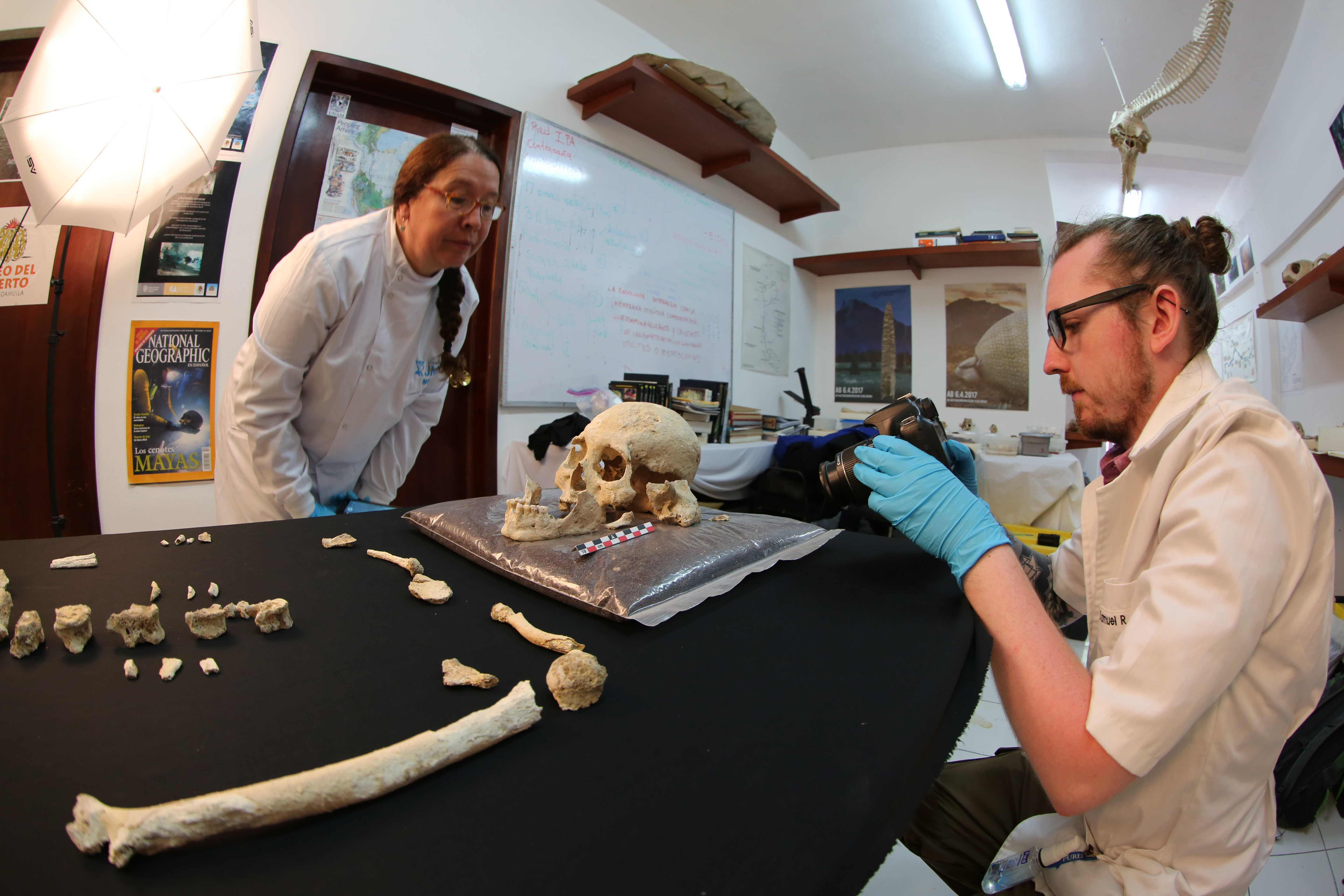 Professor Silvia Gonzalez and Dr Sam Rennie describing the Chan Hol 3 skull