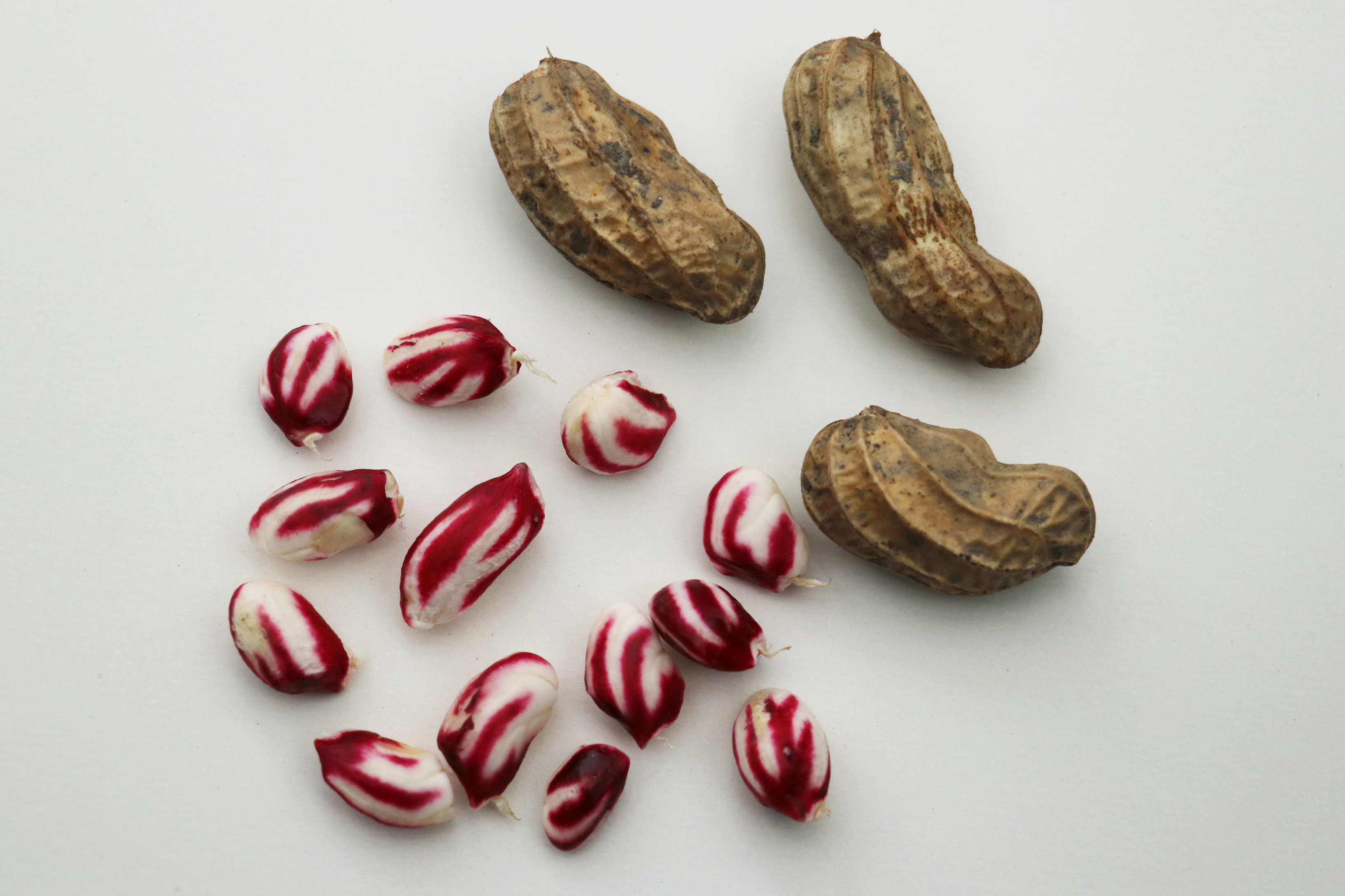 The variety Justbehappy produces striped nuts (Lubera/PA)