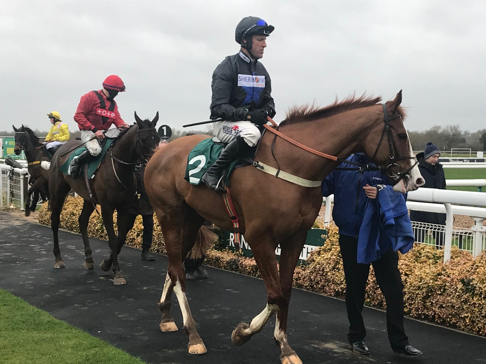 Lieutenant Rocco after moving a step closer to an outing at the Cheltenham Festival with victory at Warwick (PA Images)